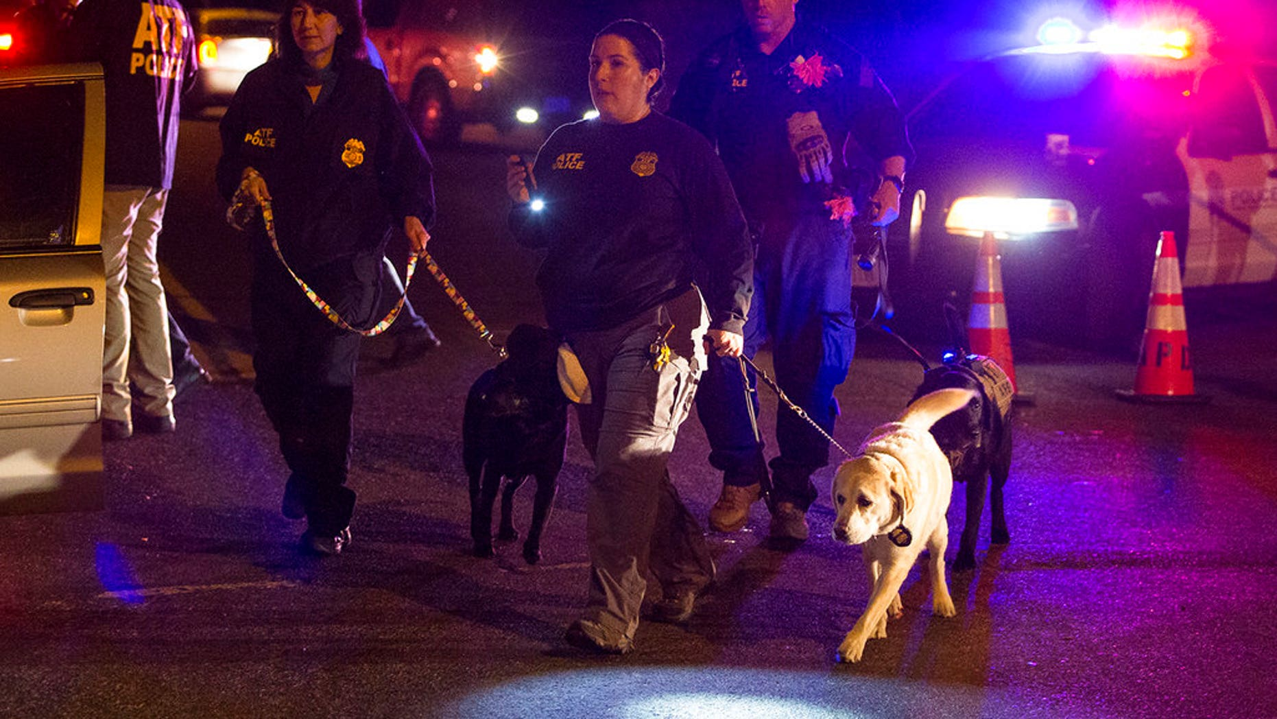 Police dogs and their handlers deploy at the scene of an explosion in southwest Austin, Texas, Sunday, March 18, 2018. Injuries were reported in the explosion, this one coming after three package bombs detonated earlier in the month in other areas of the city, killing two people and injuring two others. (Nick Wagner/Austin American-Statesman via AP)