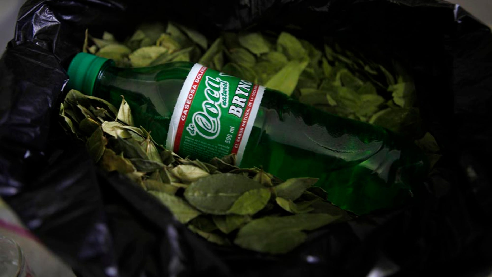 A bottle of Coca Brynco soda sits on display on top of coca leaves at the the Soda Pacena private soda company in El Alto, Bolivia, Friday Jan. 14, 2011.  Coca Brynco is a Bolivian soda made with coca leaves. (AP Photo/Juan Karita)