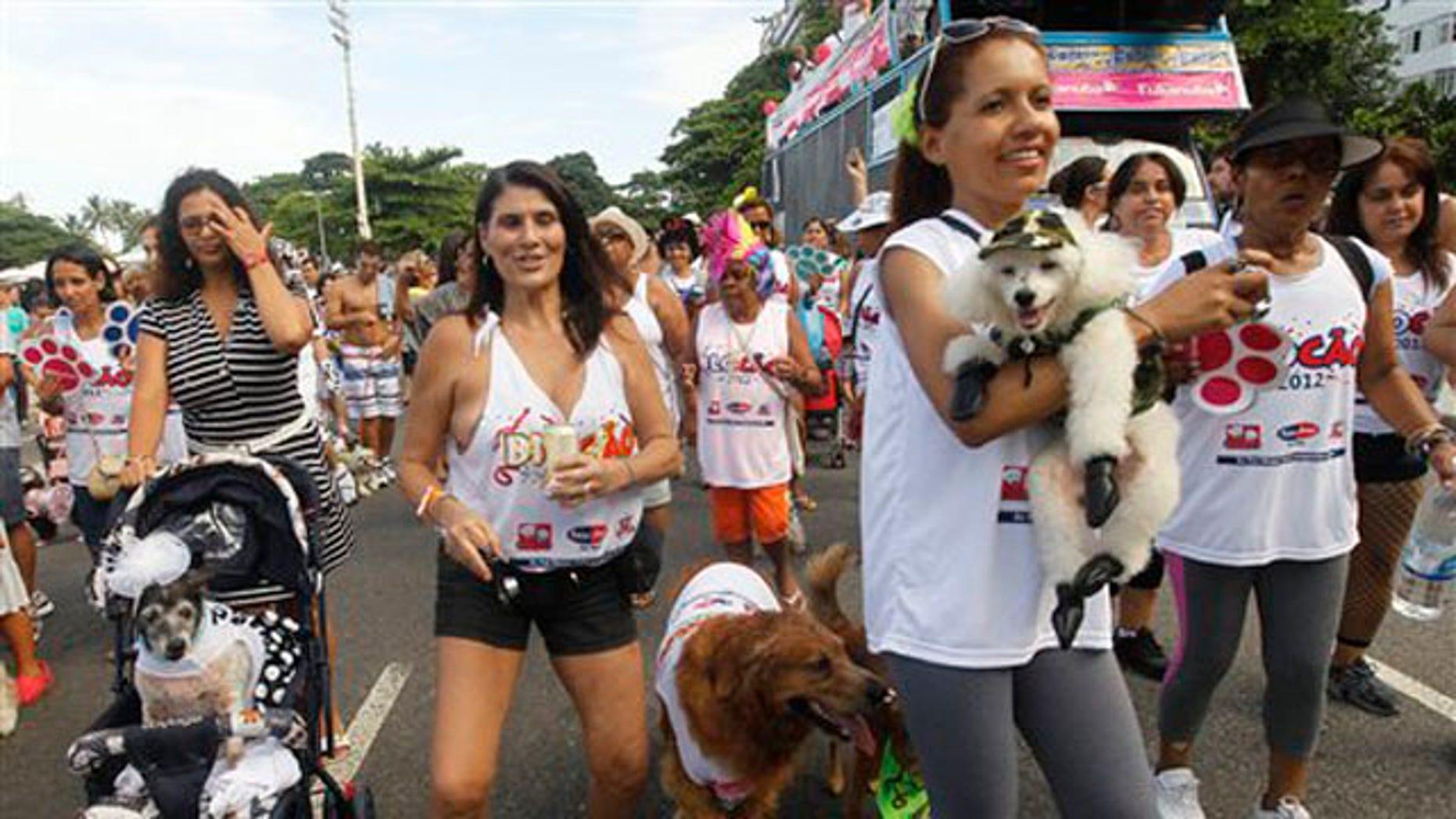 "Feb. 12, 2012: Pople take their dogs to the ""Blocao"" dog carnival parade in Rio de Janeiro, Brazil."