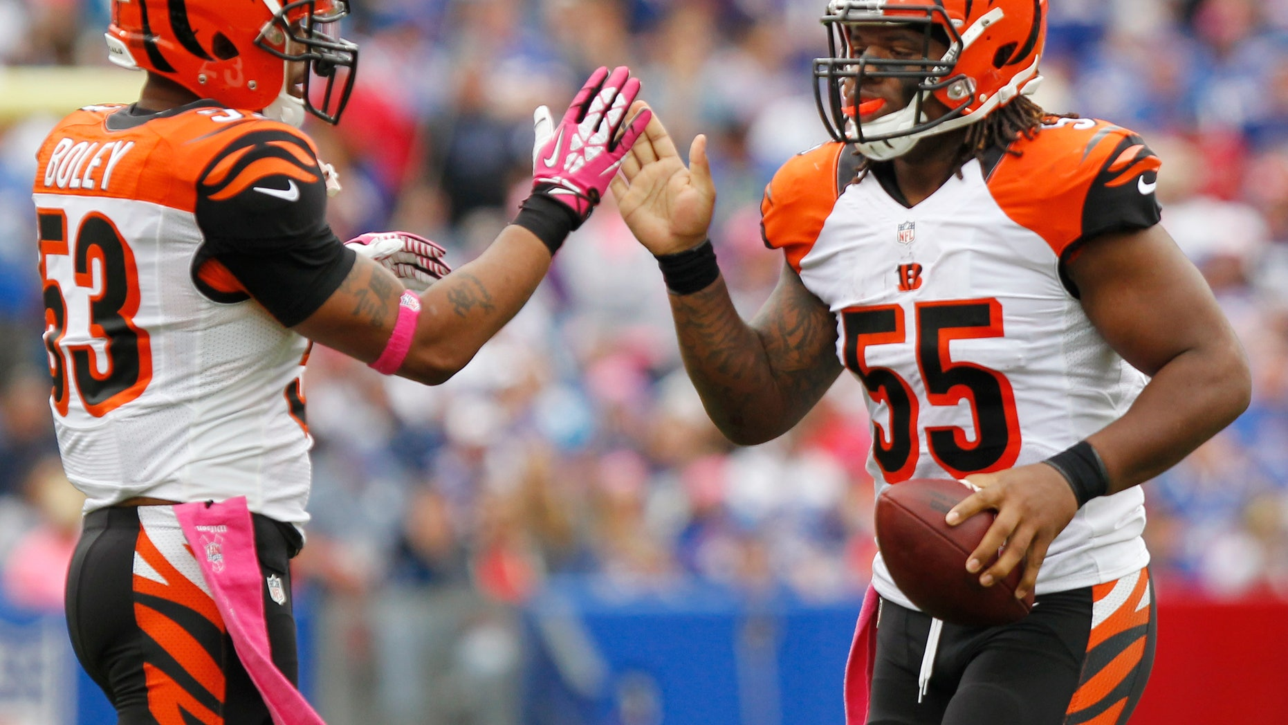 Cincinnati Bengals outside linebacker Vontaze Burfict (55) is greeted by Michael Boley after recovering a fumble against the Buffalo Bills in the third quarter of an NFL football game on Sunday, Oct. 13, 2013, in Orchard Park, N.Y. The Bengals beat the Bills 27-24. (AP Photo/Bill Wippert)