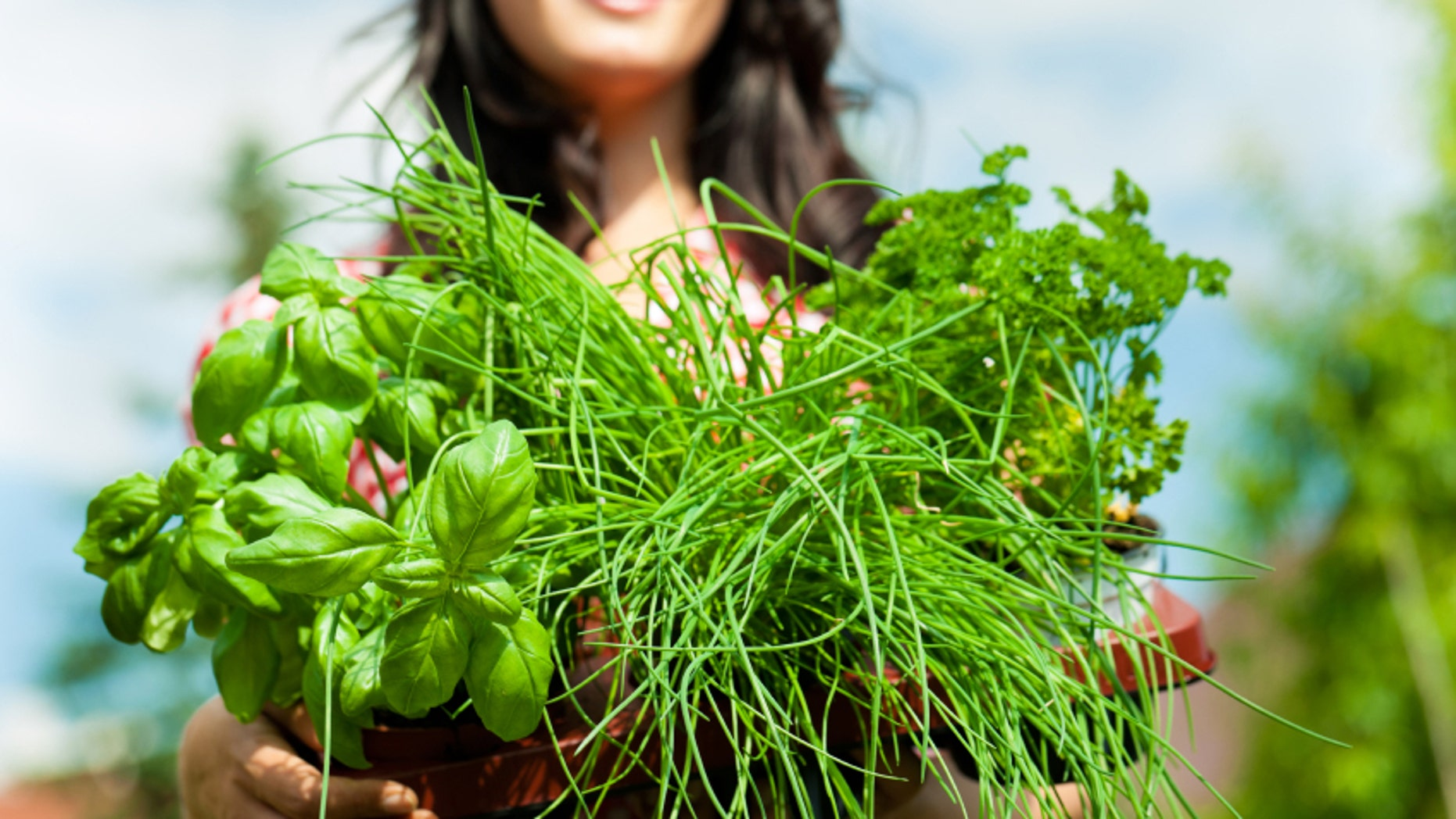 10 Healthy Herbs and How to Use Them foto