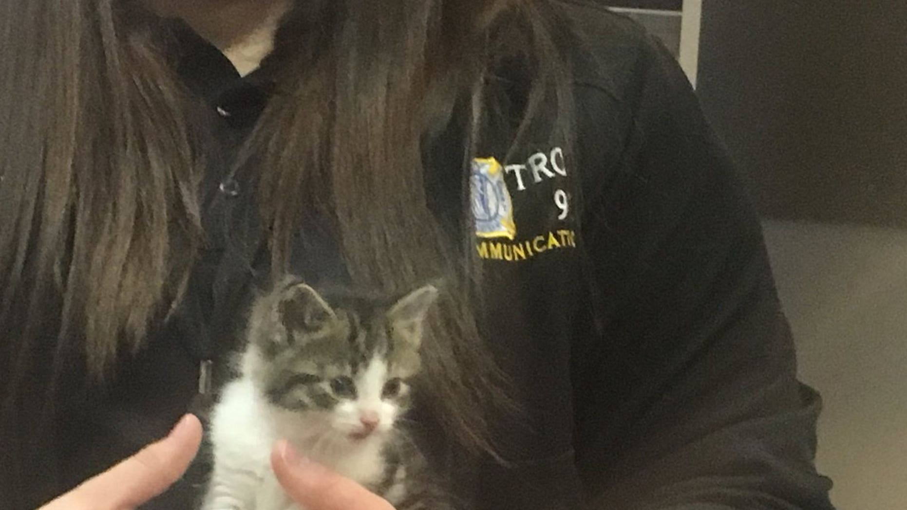 A female cat which joined the Troy police department in April has officially been named authorities said Tuesday on social media.