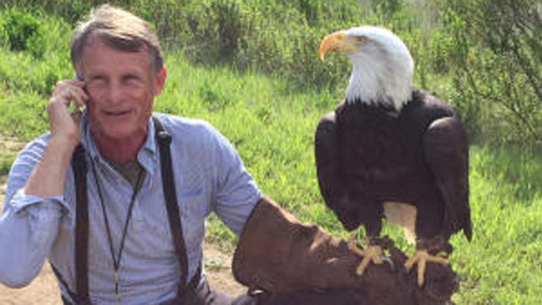 Photo shows Sequoia bald eagle and Palo Alto Junior Museum and Zoo director John Aikin. (Palo Alto Junior Museum & Zoo)