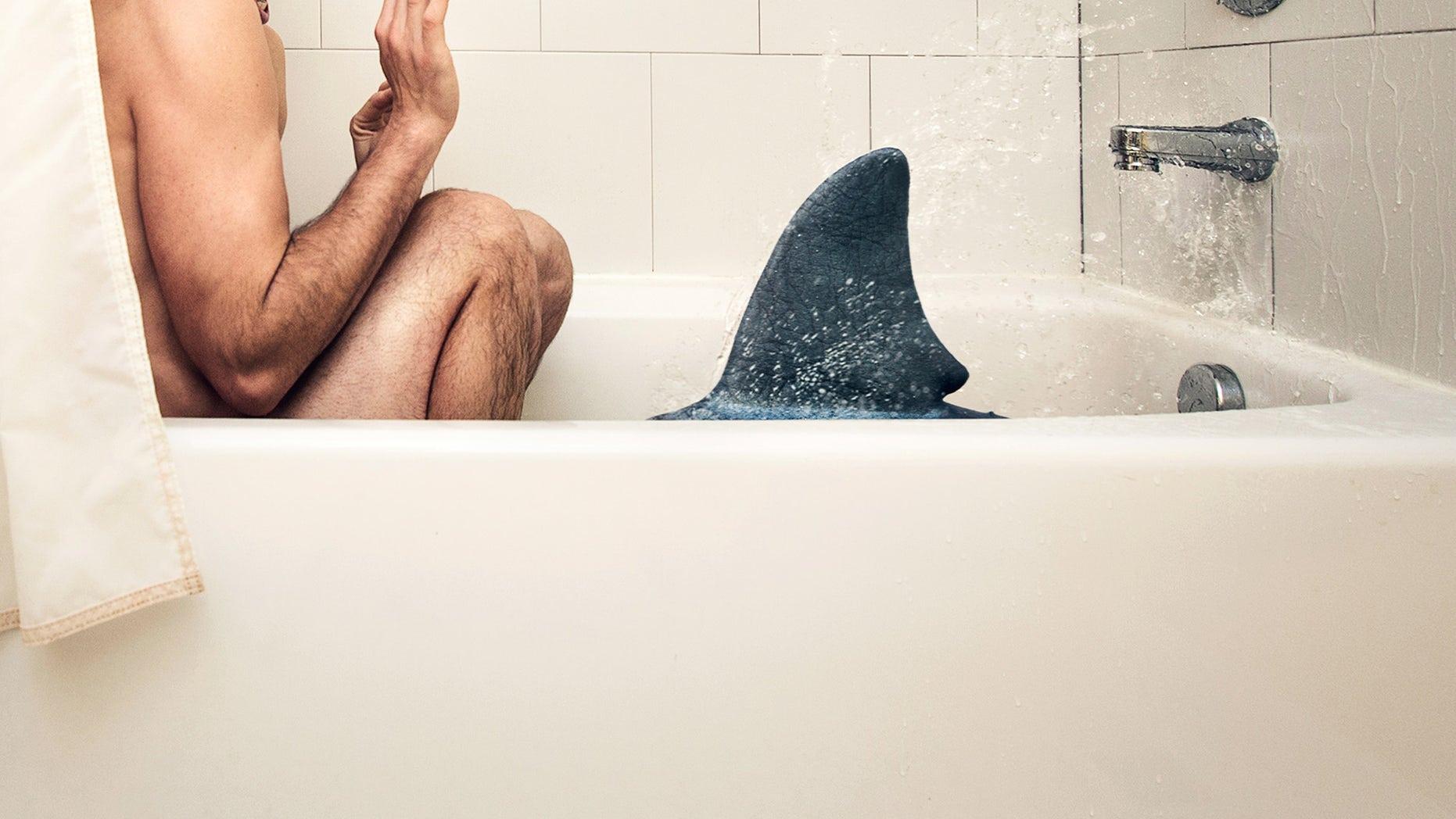 bathroom shark attack
