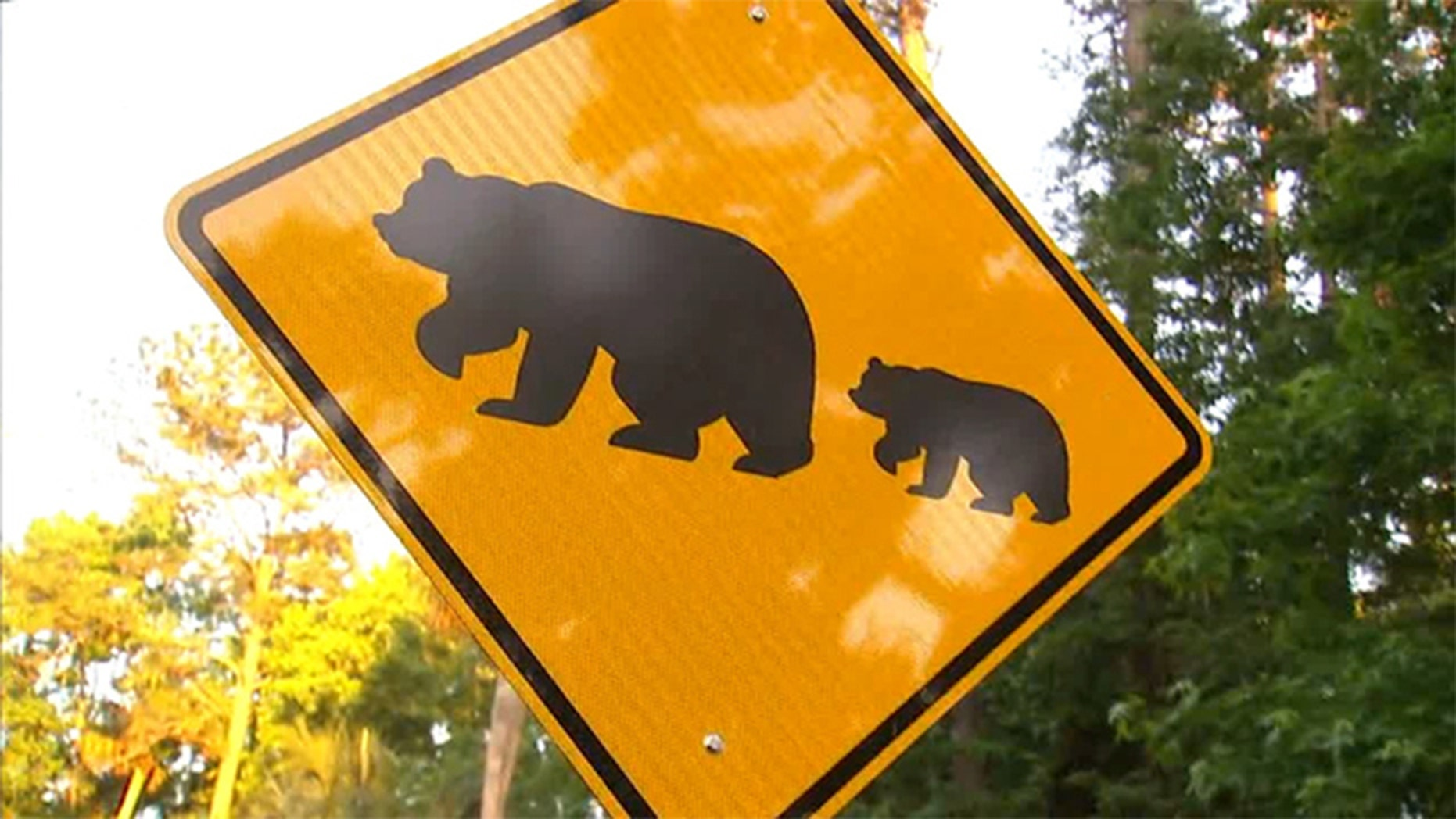 A bear crossing sign at a community in Longwood, Fla. Residents there say an aggressive bear has been attacking dogs this week.