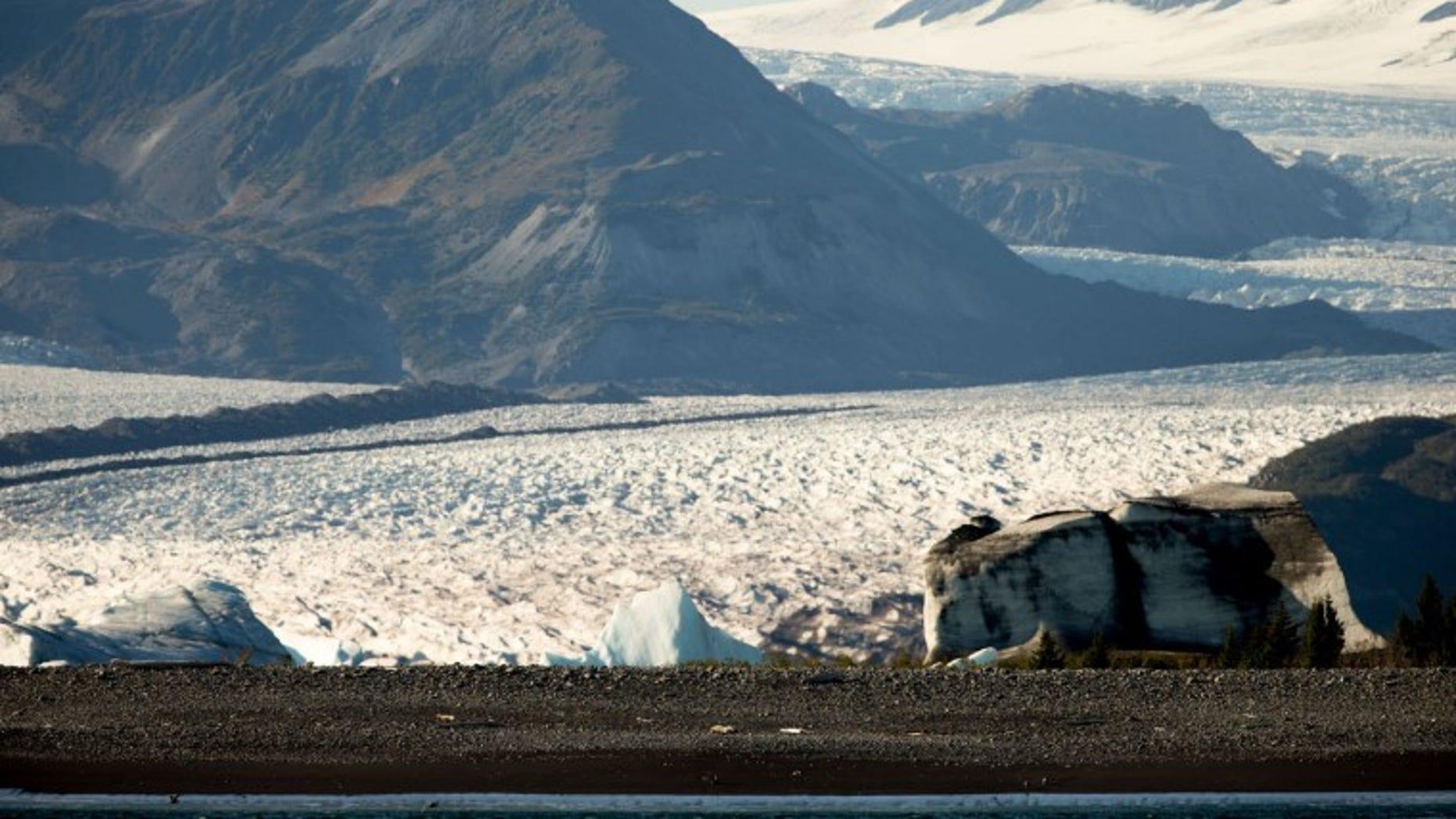 Bear Glacier in 2015.