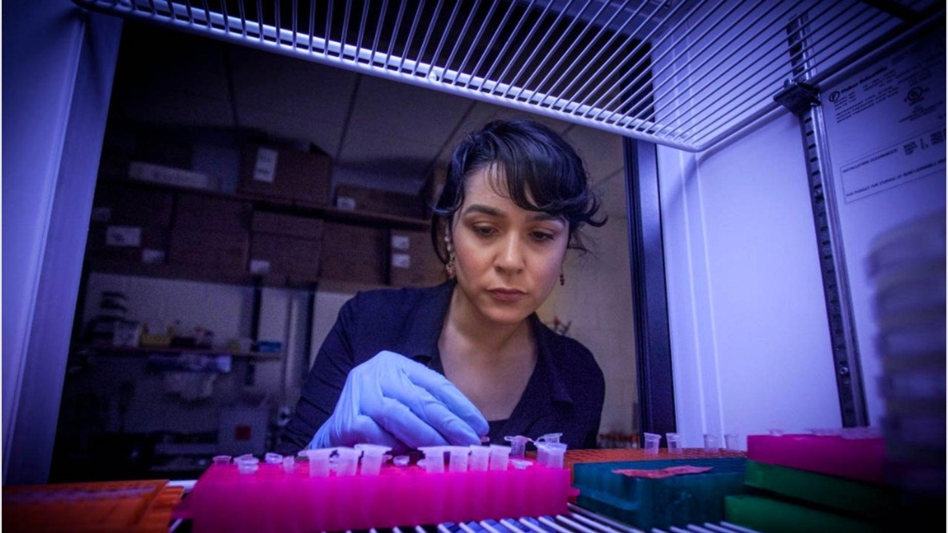 Betül Kacar in her lab.