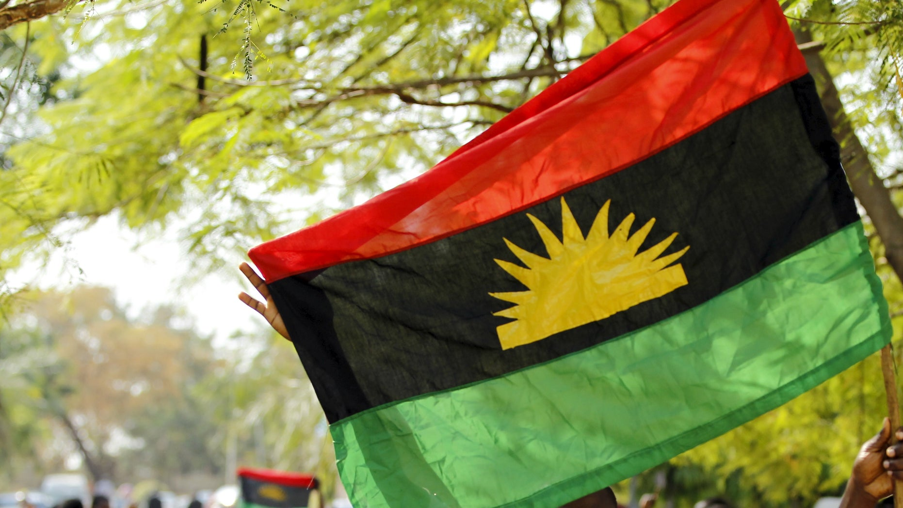 The Biafran flag at a rally in December.