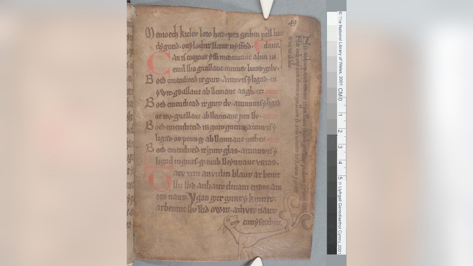 """A page (49r) of """"The Black Book of Carmarthen"""" showing the stylized drawing of a dog and text in the margins."""