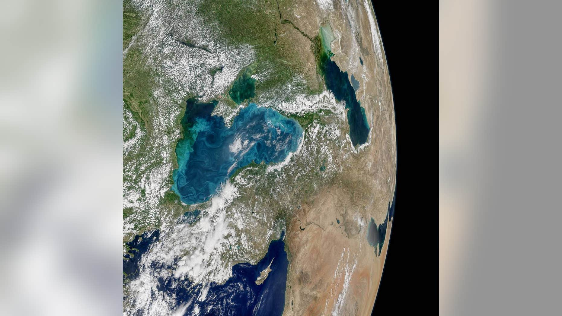 Phytoplankton swirl in the Black Sea in this image from NASA's Aqua satellite.