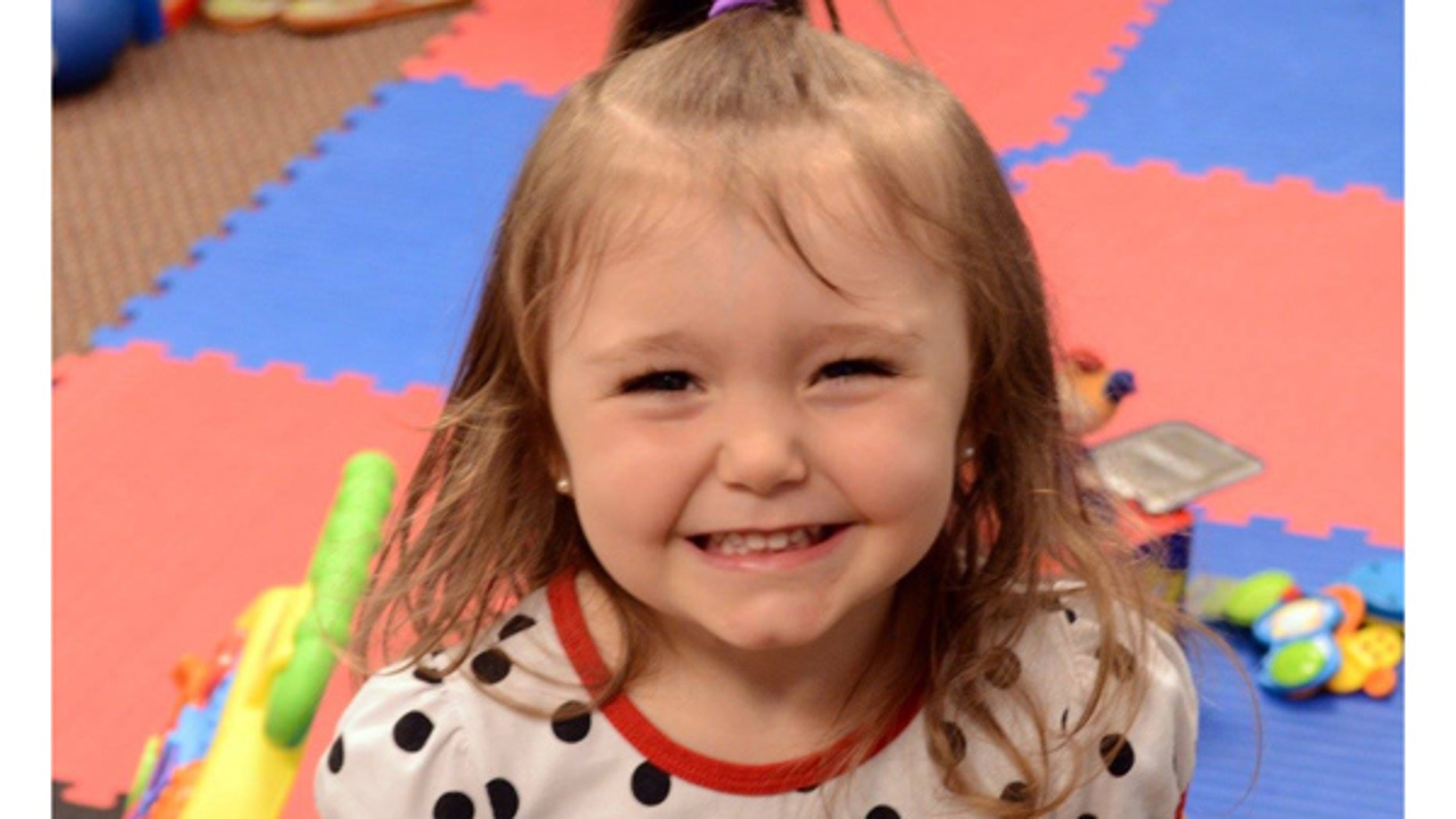 The Dalsing's 3-year-old adopted daughter, Braelynn, is pictured in a photo provided by the family.