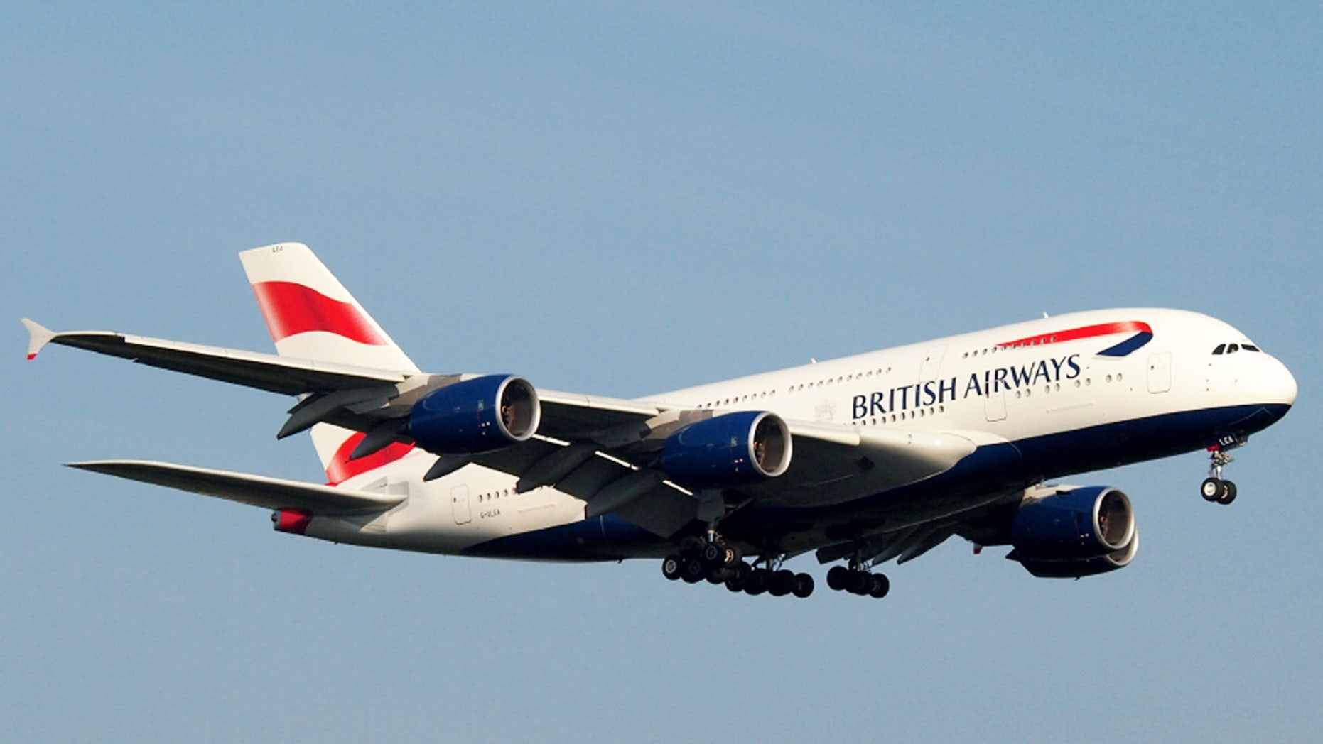 A British Airways passenger was bitten while trying to subdue another flier.