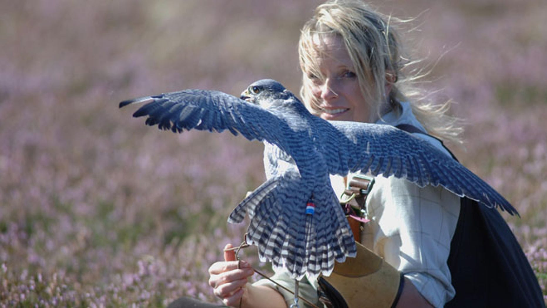 Emma Ford of the British School of Falconry.
