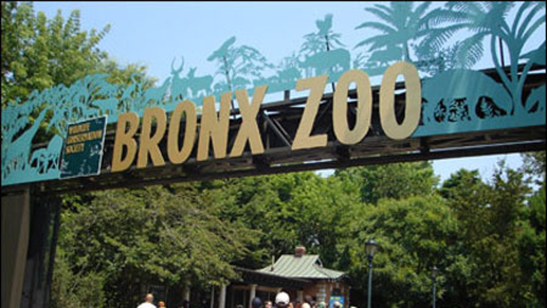 The Bronx Zoo in New York.
