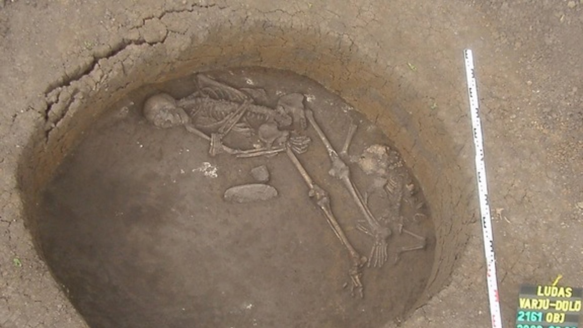 A Late Bronze Age burial from the site of Ludas-Varjú-dulo, Hungary dated to about 1200 B.C. This individual marks the onset of lactose tolerance in the region.
