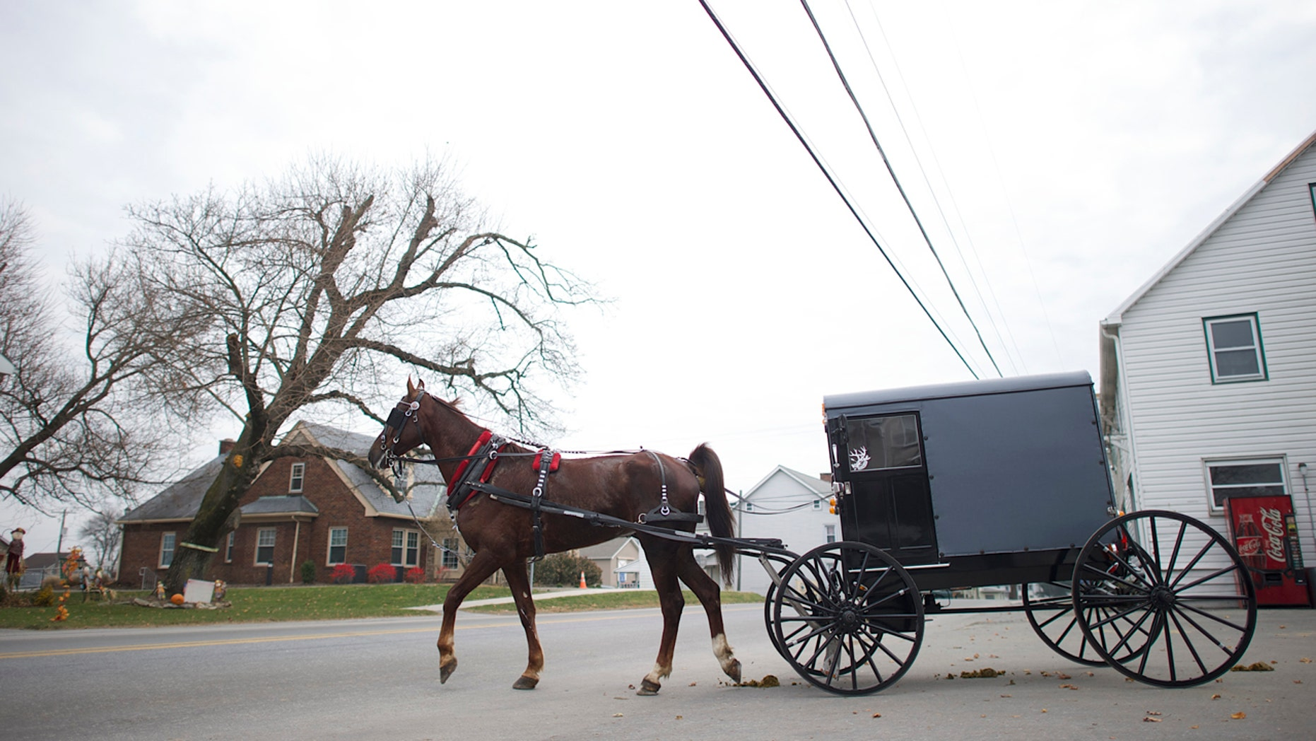 An Amish horse and buggy travels on a road in Bart Township, Pennsylvania December 1, 2013. On Oct. 2, 2006, Charles Roberts, 32, took 10 Amish girls hostage in their one-room schoolhouse in rural Pennsylvania, lined them up and shot them in the head. He then killed himself. Along with that, Terri Roberts herself became a victim, forced to confront life knowing that her son had committed such an atrocity. When the Amish forgave her son, it allowed Roberts, who is not Amish, to forgive him as well. Picture taken December 1, 2013.  REUTERS/Mark Makela (UNITED STATES - Tags: CRIME LAW SOCIETY) - RTX165AM