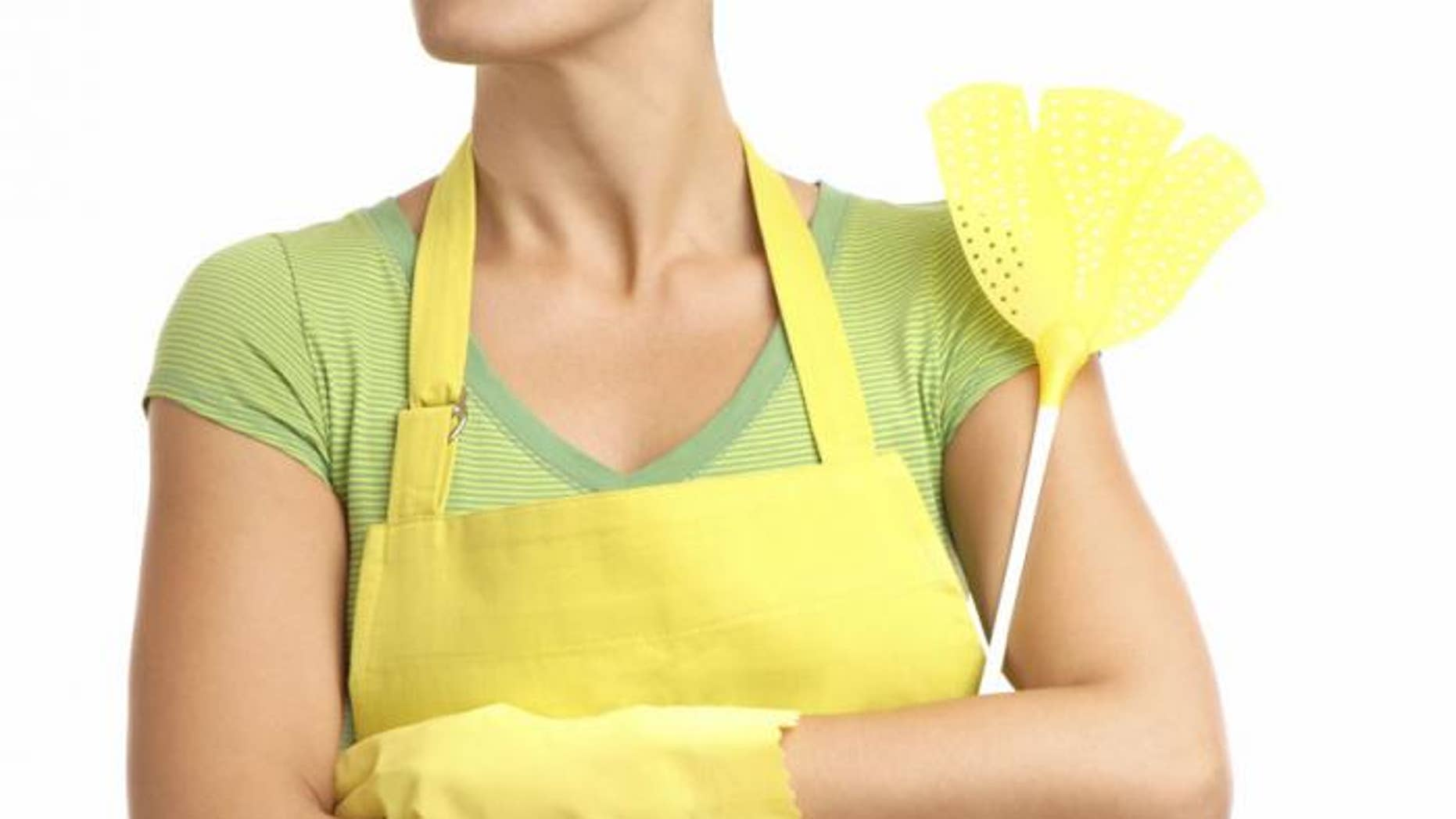 5 Easy Ways to Get Rid of Indoor Bugs | Fox News