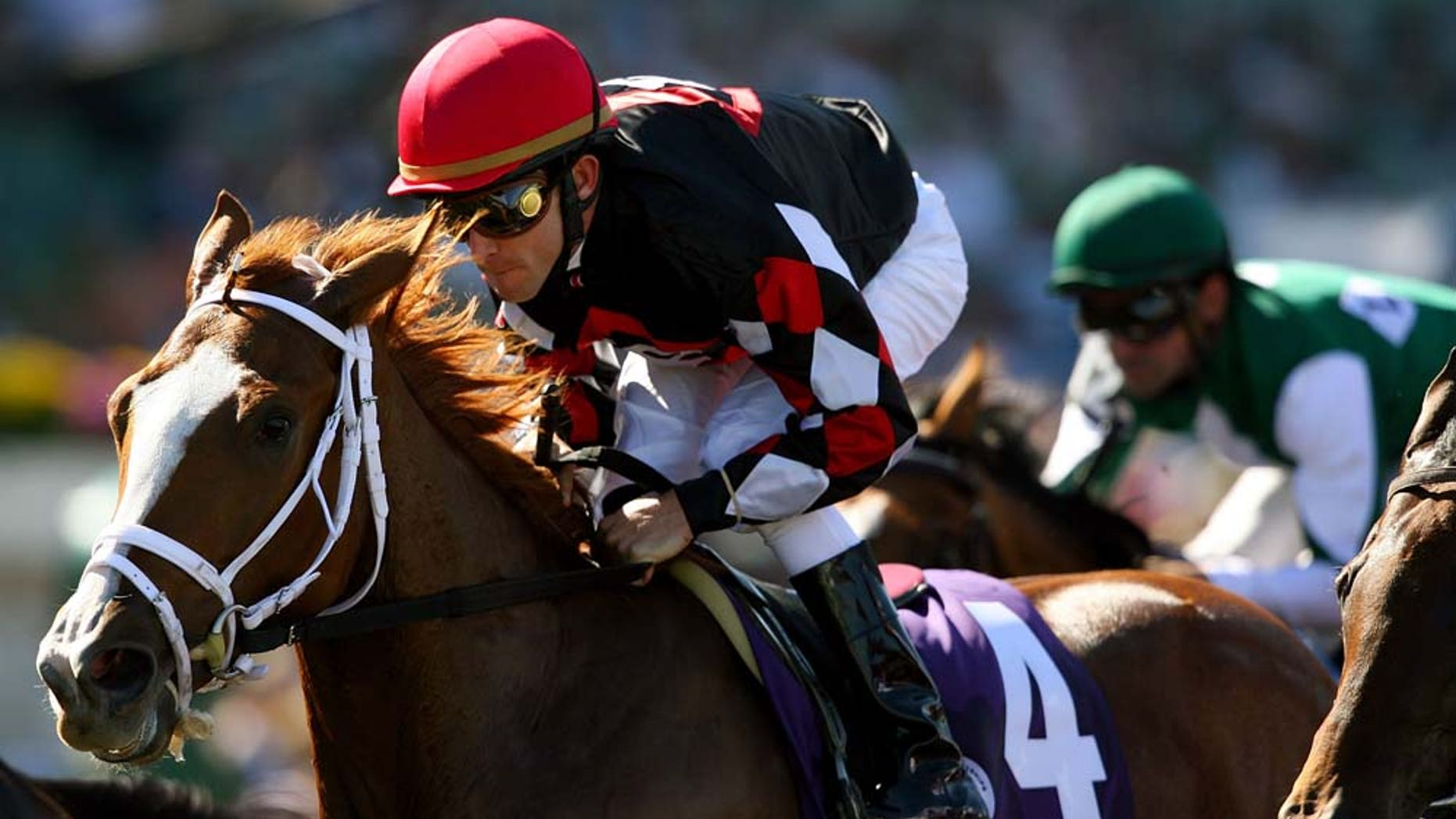 ARCADIA, CA - OCTOBER 24:  Jockey Ramon Dominguez rides Sky Diva in the Breeders' Cup Juvenile Fillies race during the Breeders' Cup World Championships at Santa Anita Park October 24, 2008 in Arcadia, California.  (Photo by Matthew Stockman/Getty Images)