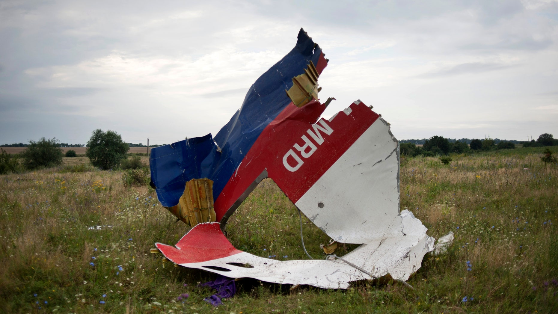 A piece of the crashed Malaysia Airlines Flight 17 near the village of Hrabove, Ukraine, July 19, 2014.