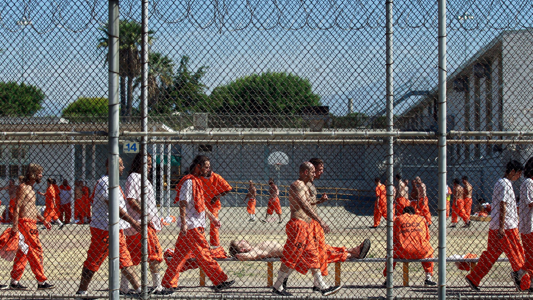 June 3, 2011: Inmates walk around an exercise yard at the California Institution for Men state prison in Chino, California.