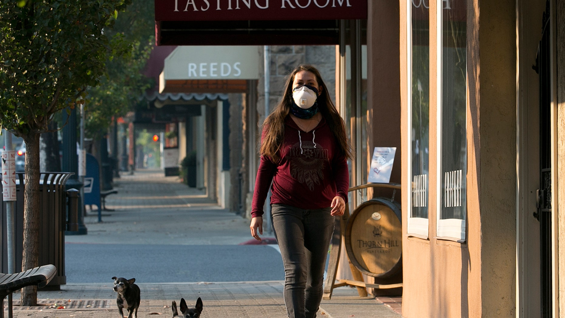 Vianey Zaldiver wears a mask due to smoke in the area as she walks her dogs in St Helena, Calif., Oct. 13, 2017.