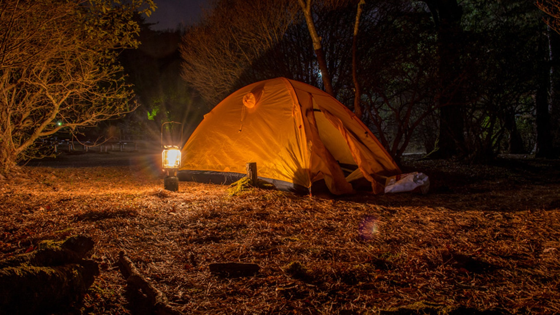 A couple's camping retreat quickly turned into a nightmare.