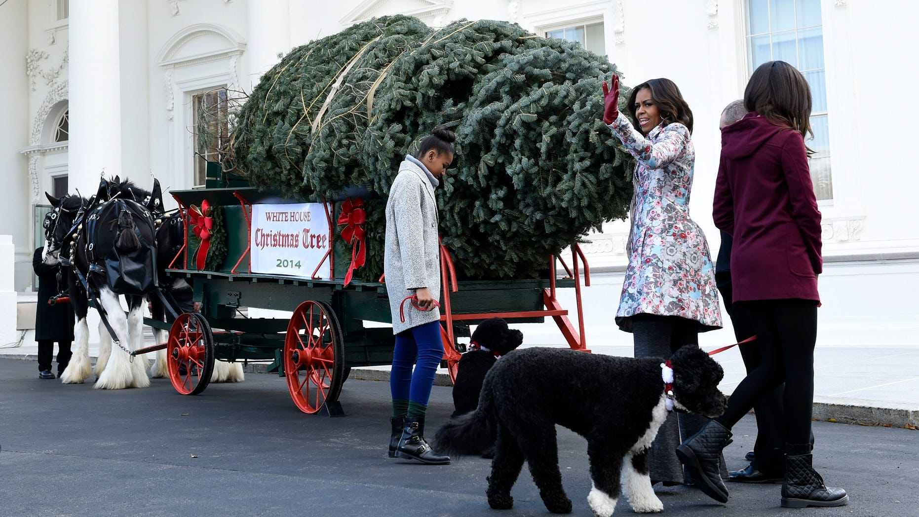 First lady Michelle Obama, second from right, joined by her daughters Sasha Obama, left, and Malia Obama, waves to the press after welcoming the Official White House Christmas Tree to the White House.