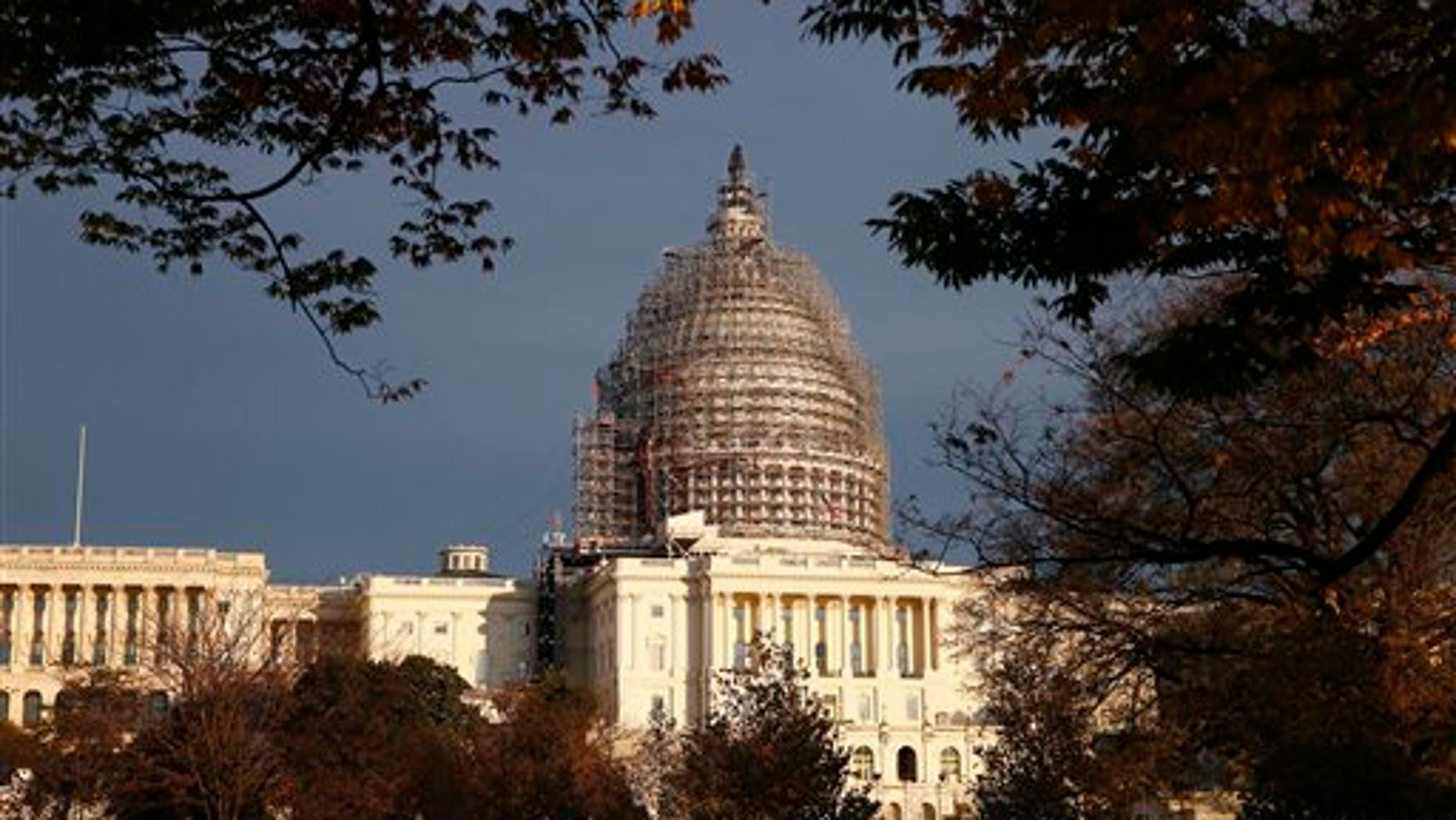 In this Nov. 22, 2015 file photo, the Capitol dome is seen on Capitol Hill. (AP)