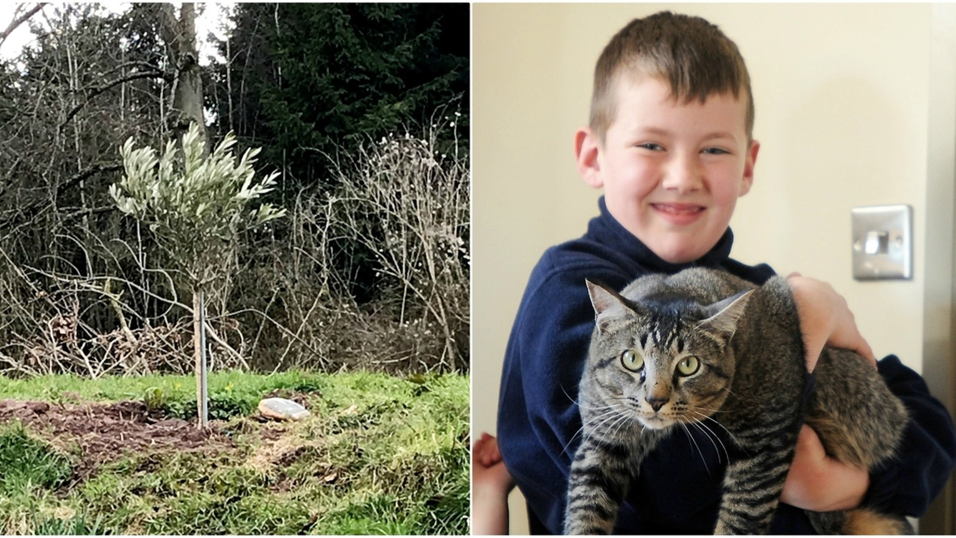 The Robinson family welcomes back a cat 12 days after it disappeared during Storm Emma in England.