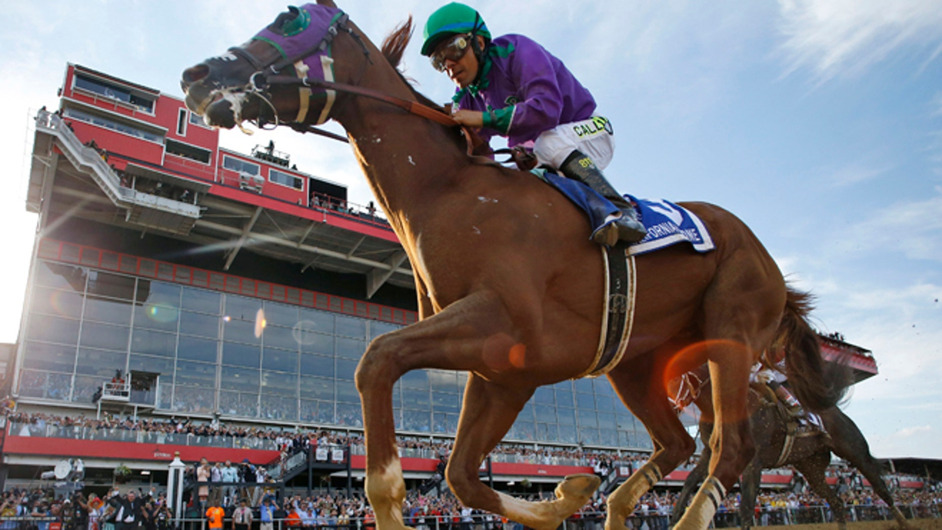 May 17, 2014: California Chrome, ridden by jockey Victor Espinoza, wins the 139th Preakness Stakes horse race at Pimlico Race Course in Baltimore.