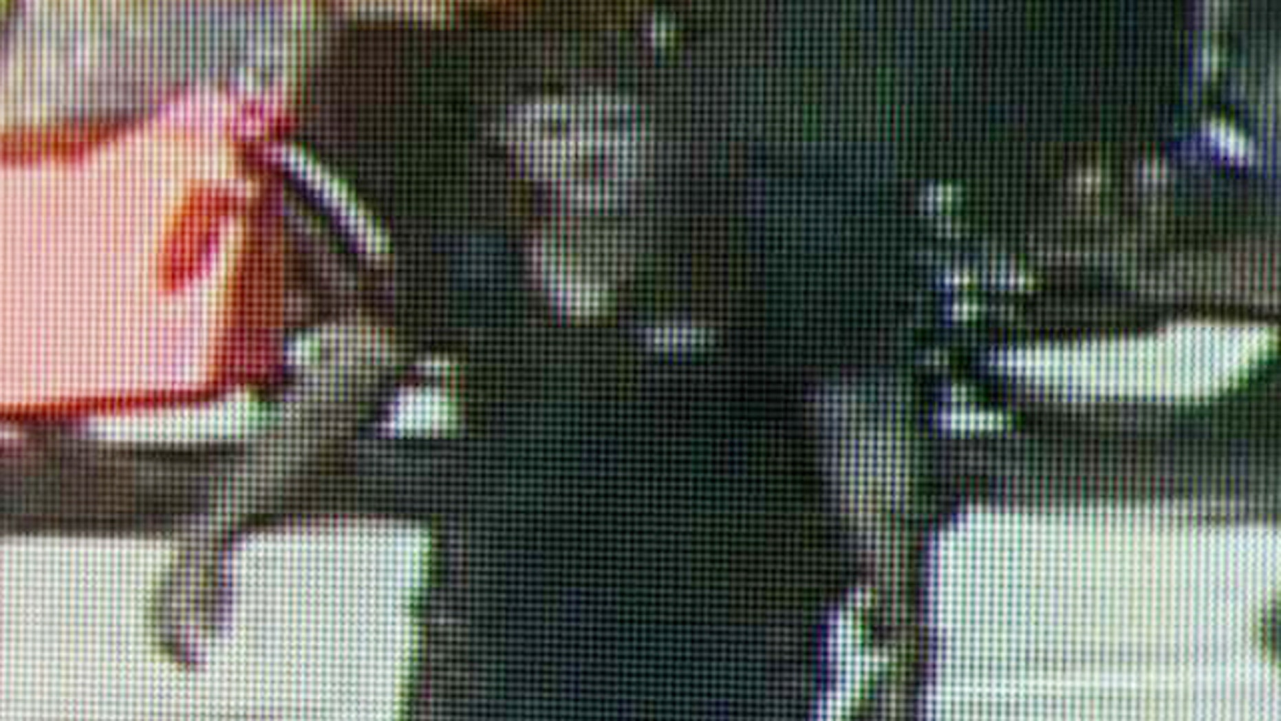 Sept. 12, 2012: This image taken from surveillance video and provided by the New York City Police Department shows a man believed to have mugged and sexually assaulted a 73 year old woman in New York's Central Park. The woman was attacked about 11 a.m. while bird watching near the park's tranquil Strawberry Fields that serves as a memorial to John Lennon. (AP/NYPD)