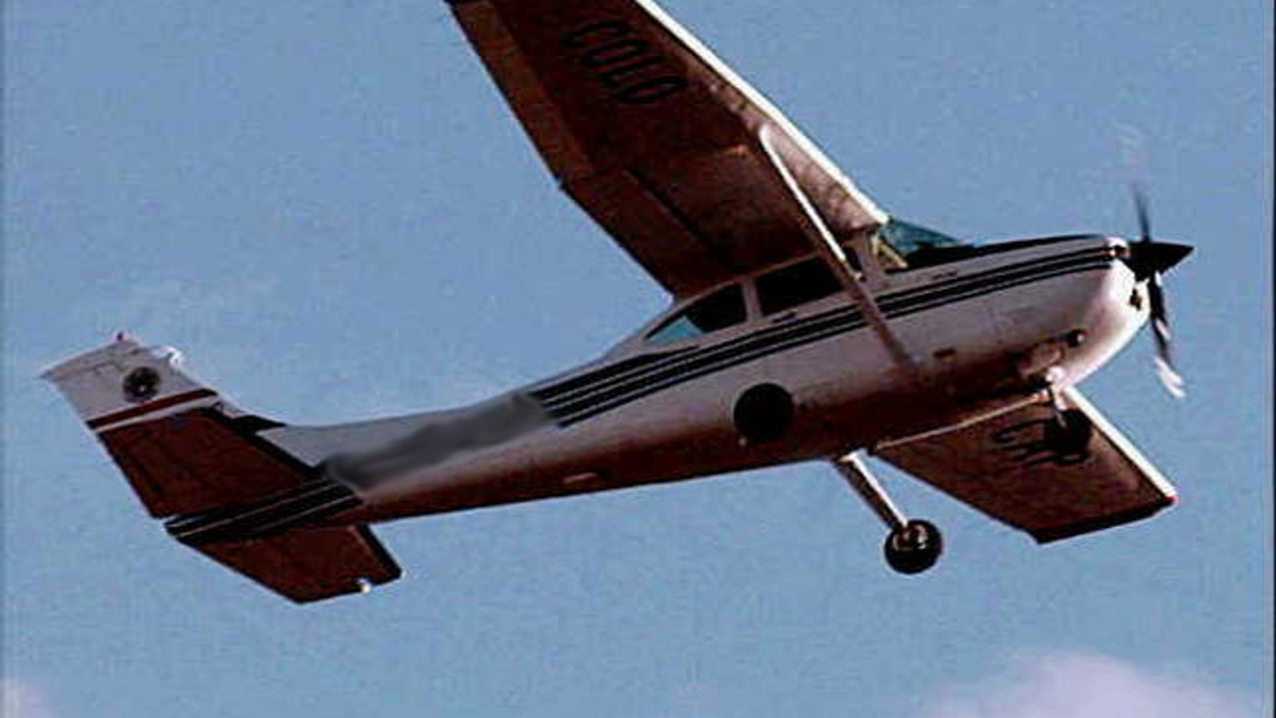The plane that crashed was a Cessna 172.