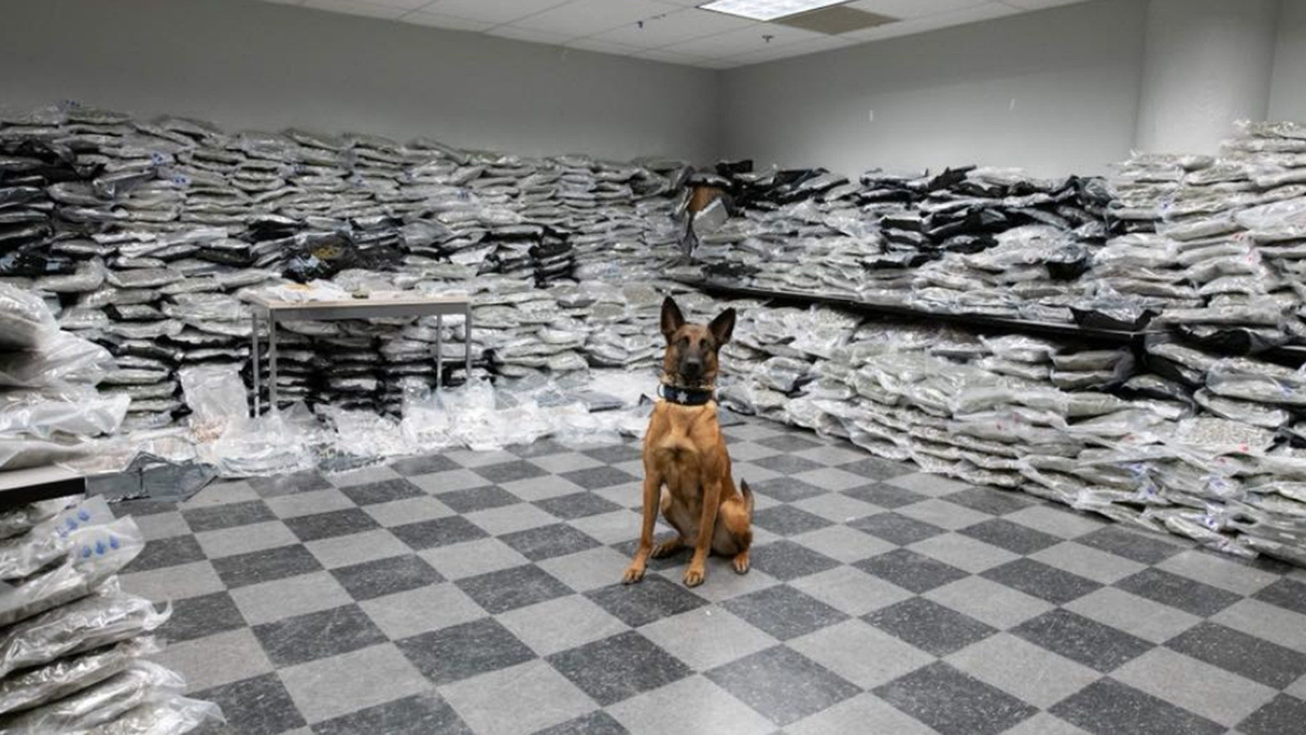 Chicago police found more than 1,500 pounds of marijuana during a traffic stop on Saturday.