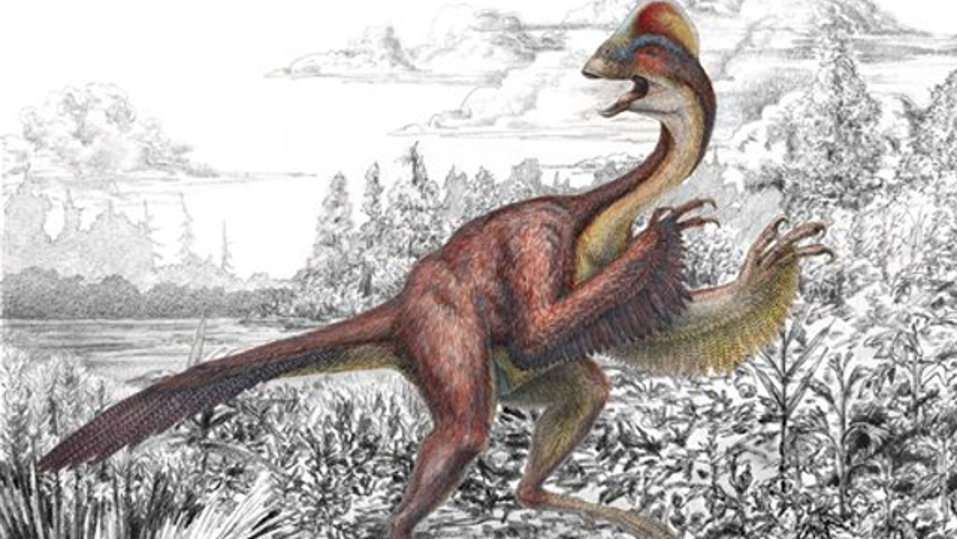 March 18, 2014: This illustration provided by the Carnegie Museum of Natural History shows the dinosaur Anzu wyliei.