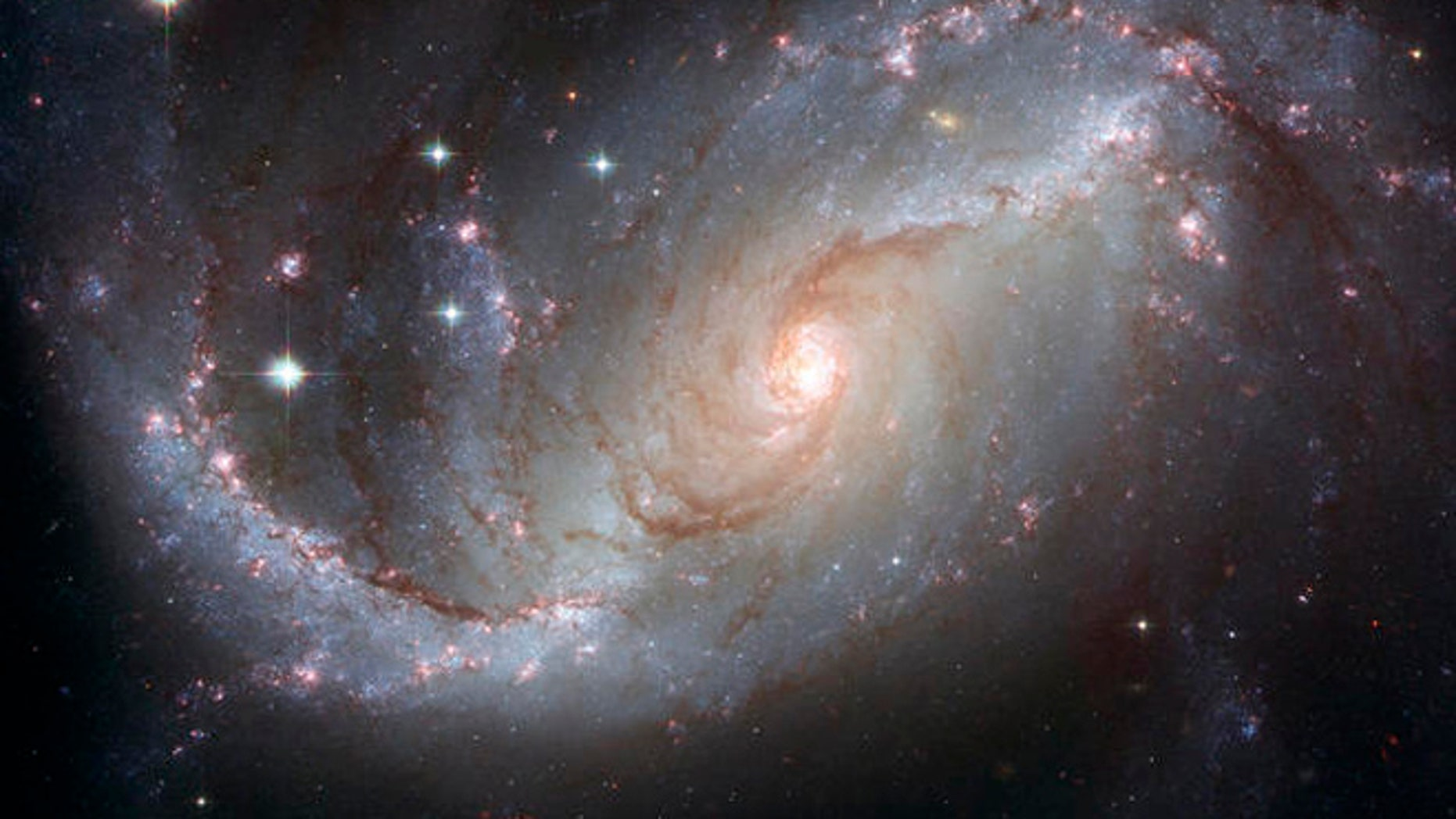 This photo supplied by NASA and the European Space Agency Tuesday, April 3, 2007, is a Hubble Space Telescope view of the barred spiral galaxy NGC 1672, showing up clusters of hot young blue stars along its spiral arms, and clouds of hydrogen gas glowing in red. Delicate curtains of dust partially obscure and redden the light of the stars behind them. NGC 1672s symmetric look is emphasized by the four principal arms, edged by eye-catching dust lanes that extend out from the center. The galaxy, visible from the Southern Hemisphere, is seen almost face on and shows regions of intense star formation. The greatest concentrations of star formation are found in the so-called starburst regions near the ends of the galaxys strong galactic bar. (AP Photo/NASA-ESA) Credit: NASA, ESA