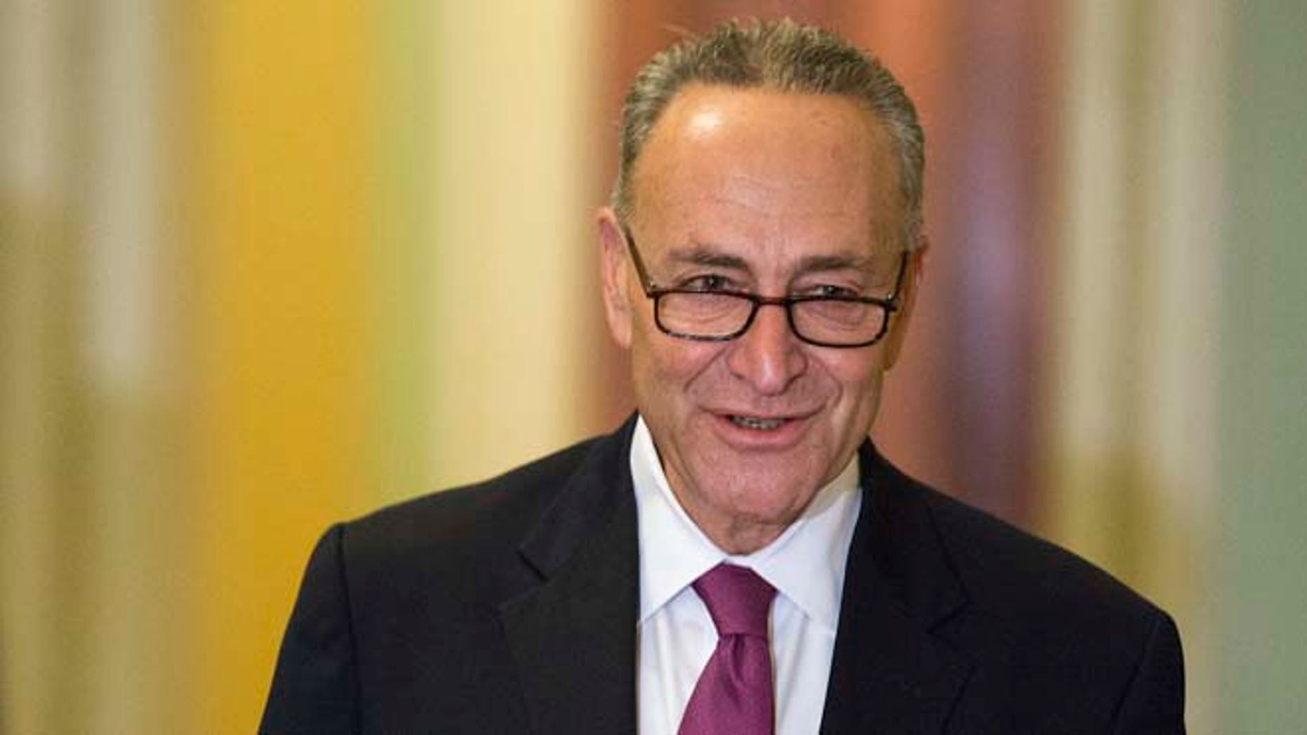 This Nov. 13, 2014 file photo shows Senator Chuck Schumer, D-N.Y., on Capitol Hill in Washington.
