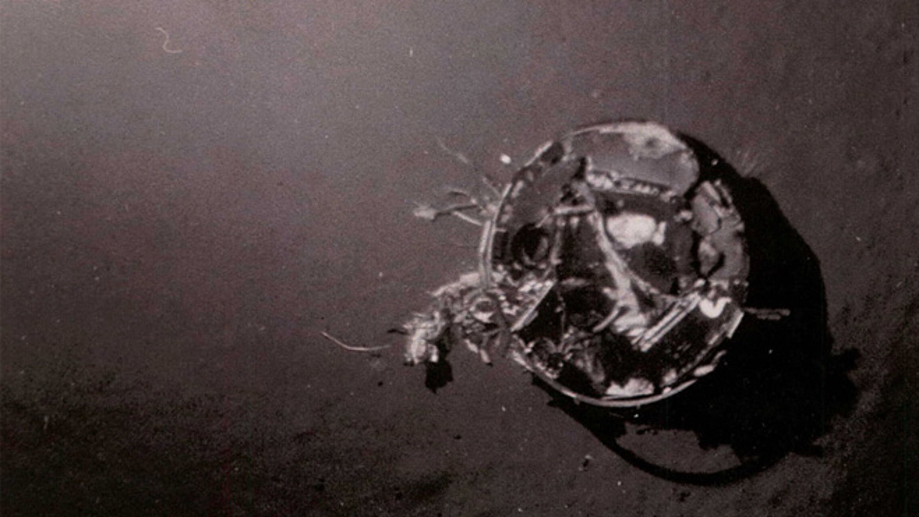 """According to the declassified CIA document, """"On 10 July 1971, the third HEXAGON RV was lost. The parachute failed to reef before fully deploying, and it was snapped off at the swivel. The RV entered ballistically and impacted the water with a force of approximately 2600 g's and settled in 16,000 feet of water."""""""