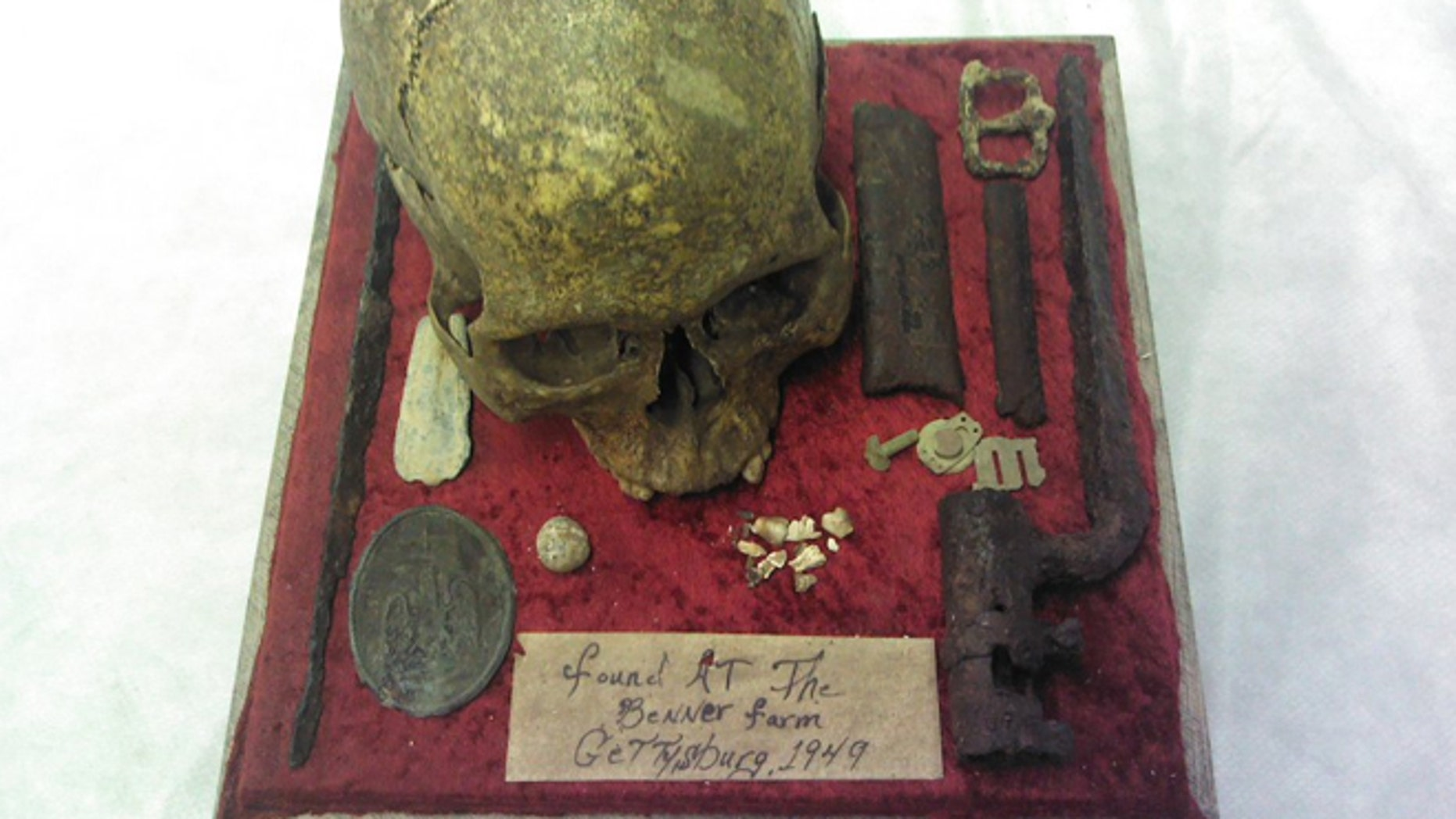 Estate Auction Company had hoped the auction of the skull would sell for between $50,000 and $250,000.