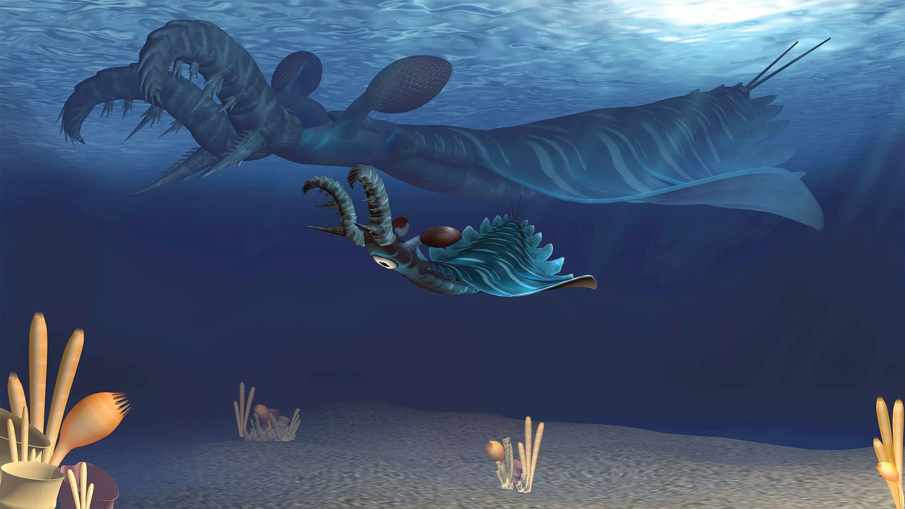 An artist's rendering shows a baby (foreground) and adult Lyrarapax unguispinus hunting the Cambrian seas like the creepy predators they were. (Credit: Science China Press)