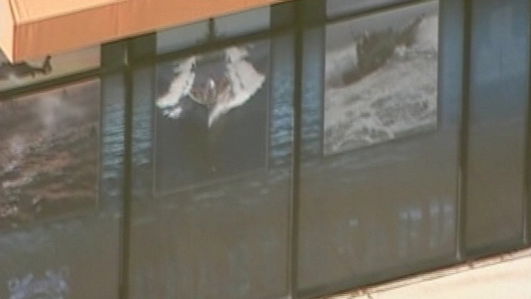 A spokeswoman for the Prince William County Police Department said Tuesday it appears the shooting at the building on Potomac Mills Circle, seen here, occurred overnight.  (MyFoxDC.com)