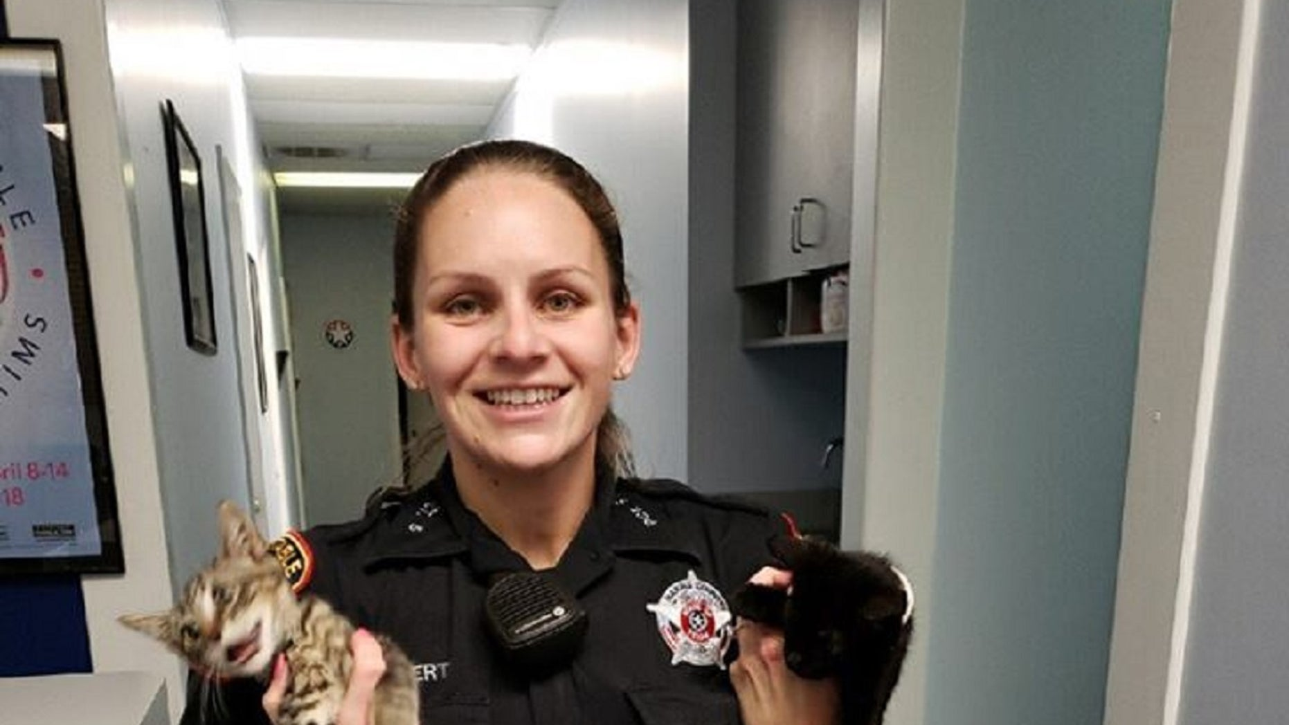 A Texas deputy found several kittens in a gym bag last week, according to the Harris County Constable's Office Precinct 5.