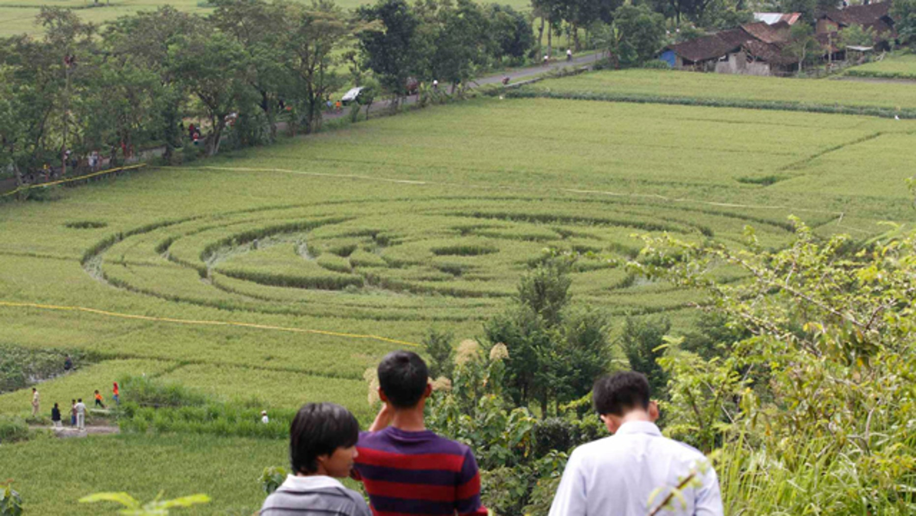 The work of aliens? Indonesia's first crop circle has left many wondering -- but scientists remain skeptical.