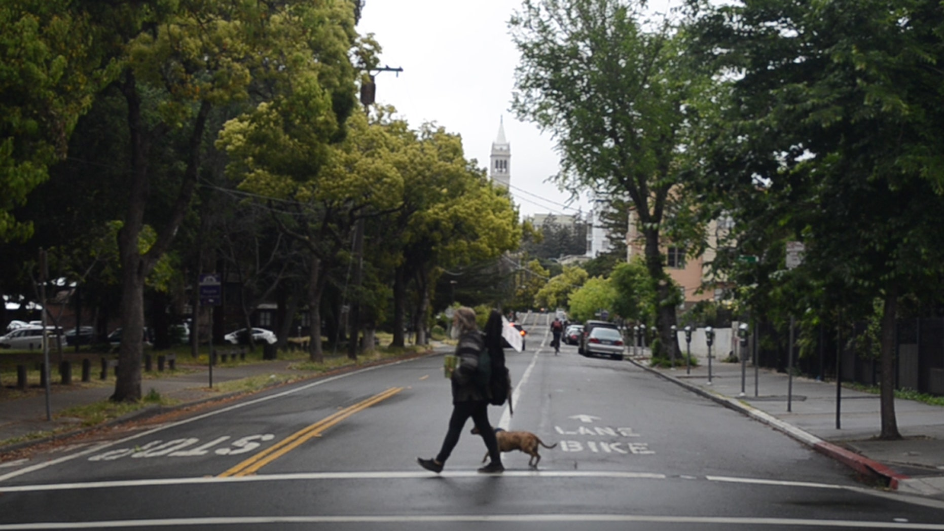 A homeless man walks with his dog in Berkeley, Calif.