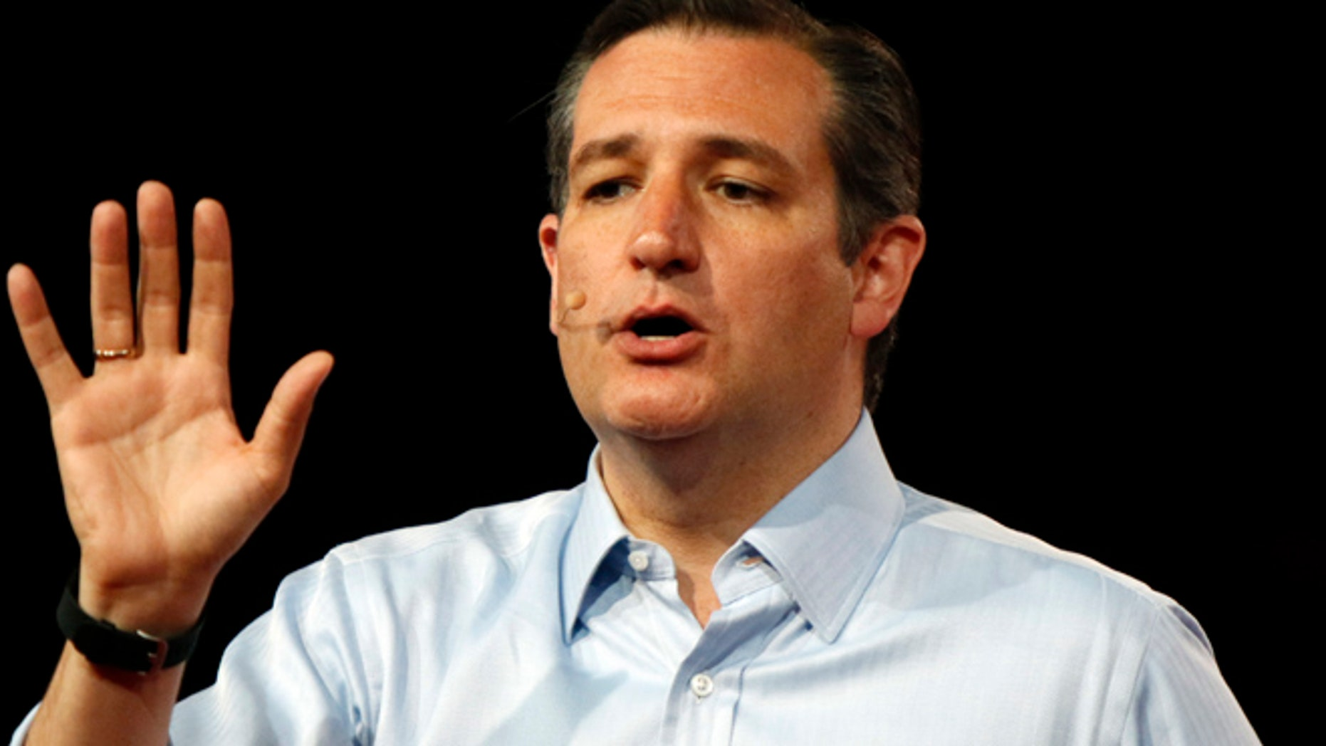 Aug 22, 2015: Republican presidential candidate, Sen. Ted Cruz, R-Texas, speaks at the Defending the American Dream summit hosted by Americans for Prosperity at the Greater Columbus Convention Center in Columbus, Ohio. (AP)
