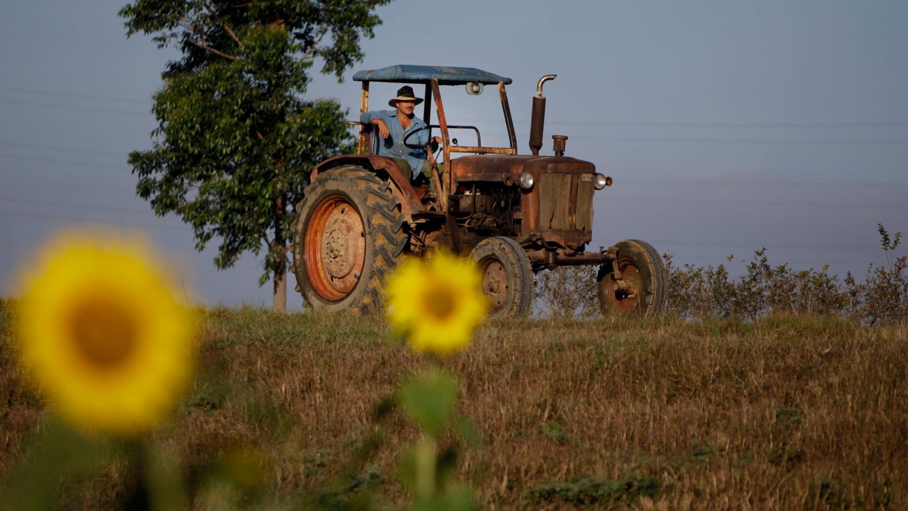 Feb. 22, 2011: A farmer drives his tractor in Pinar del Rio, Cuba.