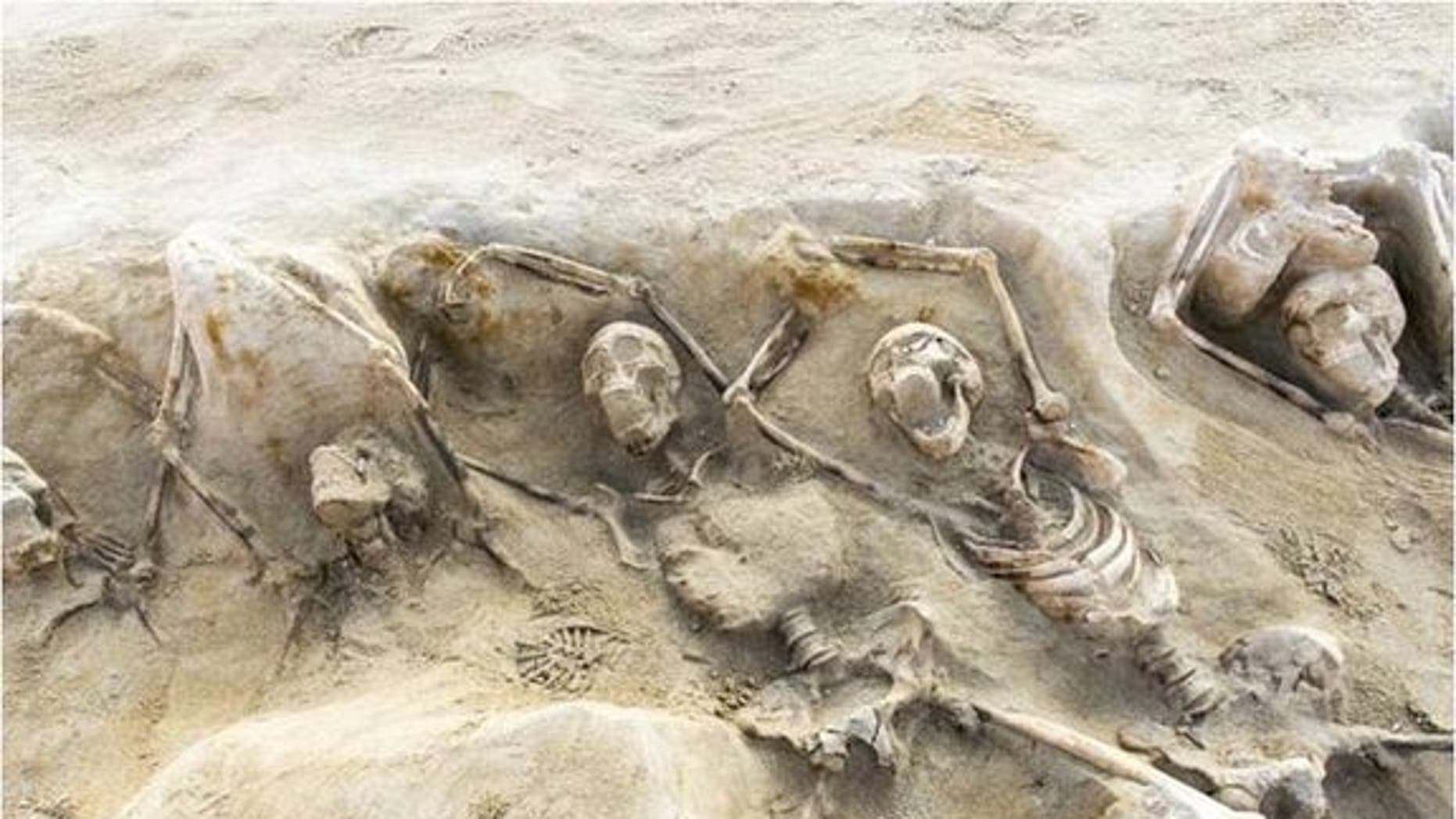 A mass grave found outside of Athens may contain the burial  of followers of Cylon, a tyrant who sought to take over the Acropolis in 632 B.C.