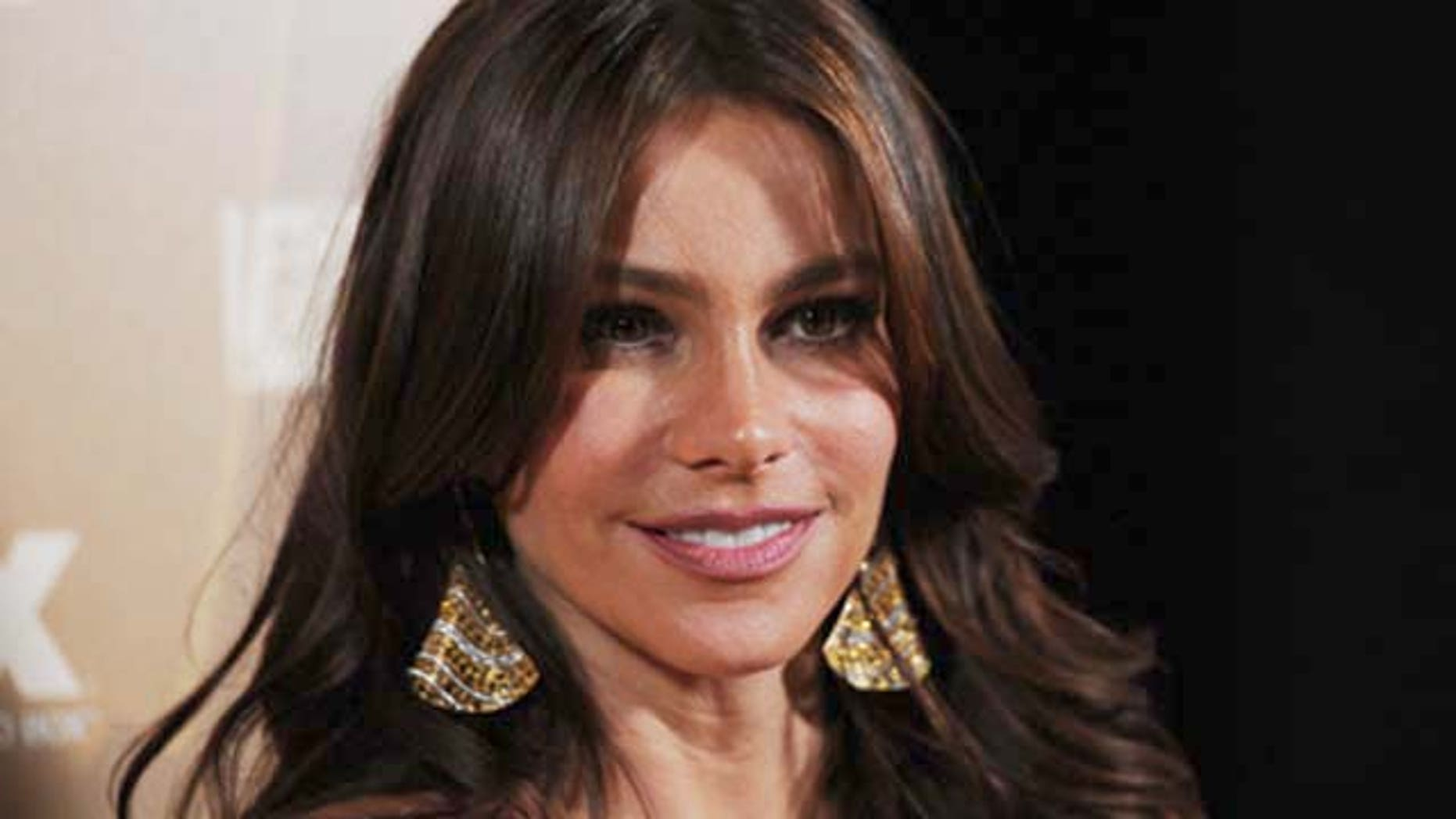 Actress Sofia Vergara's brother, Julio, has been deported. His arrest, in May but made public Thursday, comes after years of arrests for multiple offenses.