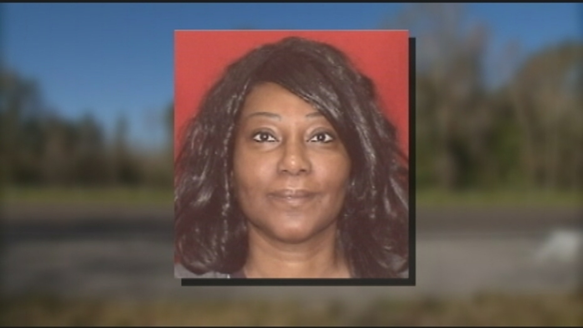 Dana Nelson, 47, was killed when she was struck by a car while she assisted a stranded motorist.