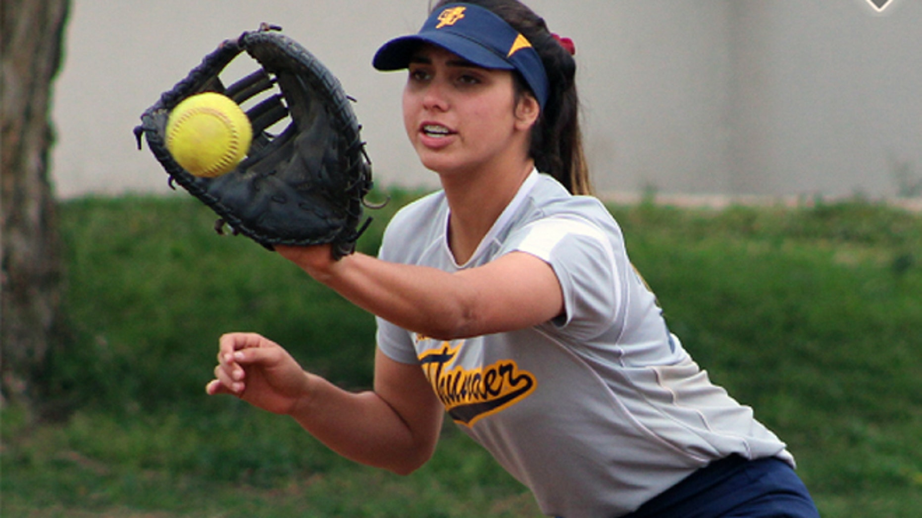 Dana Housley is on life support after suffering a collapsing during a softball game.