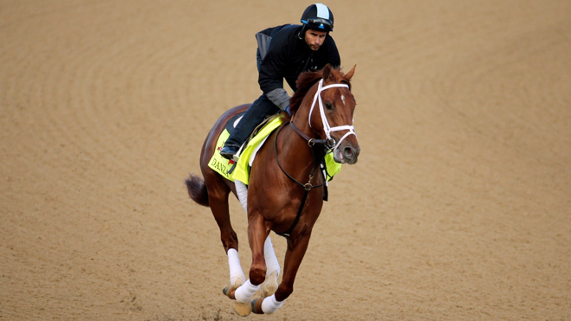 """May 1: Danza, who was named after the """"Who's the Boss"""" star, out  for a morning workout at Churchill Downs."""
